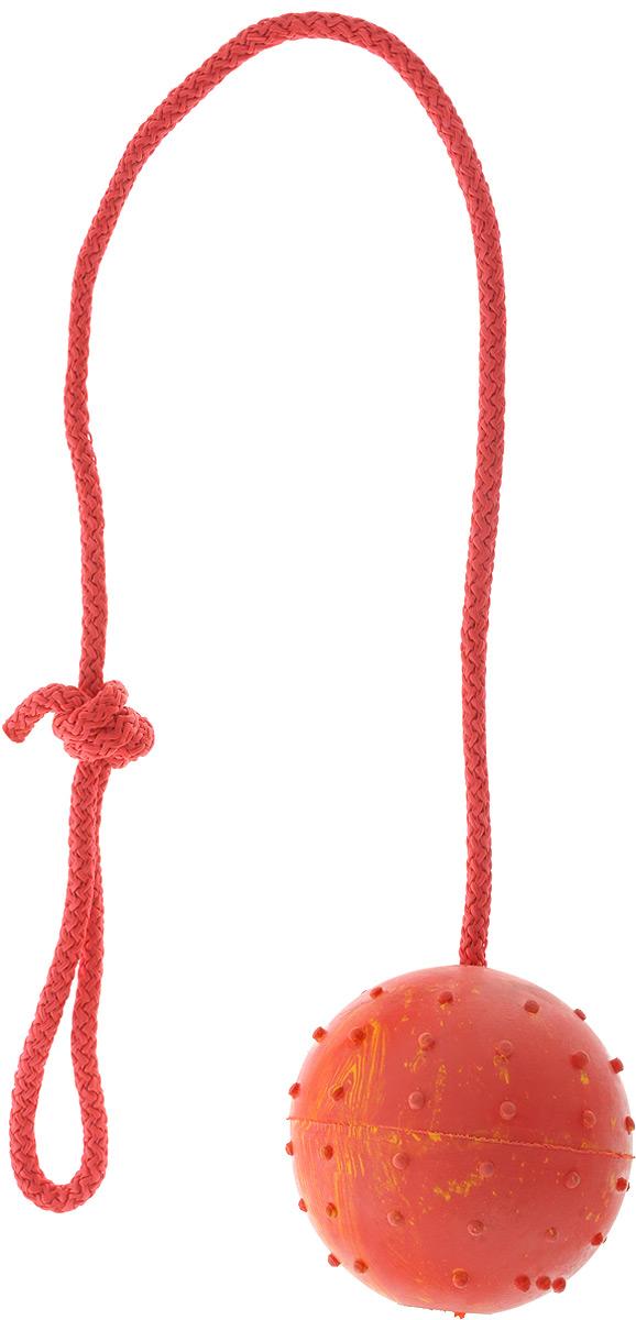 Игрушка для собак Каскад Мяч цельнолитой, на веревке, цвет: красный, желтый, диаметр 7 см12171996Игрушка для собак Каскад Мяч цельнолитой выполнена из прочной резины в форме мяча с мягкими шипами для массажа десен и чистки зубов. Изделие дополнено прочной веревкой, которая послужит ручкой. Такая игрушка порадует вашего любимца, а вам доставит массу приятных эмоций, ведь наблюдать за игрой всегда интересно и приятно. Великолепно подходит для активных и ведущих спортивный образ жизни собак. Игрушка станет незаменимой во время дрессировки собак. Диаметр игрушки: 7 см. Длина игрушки (с учетом веревки): 36 см.