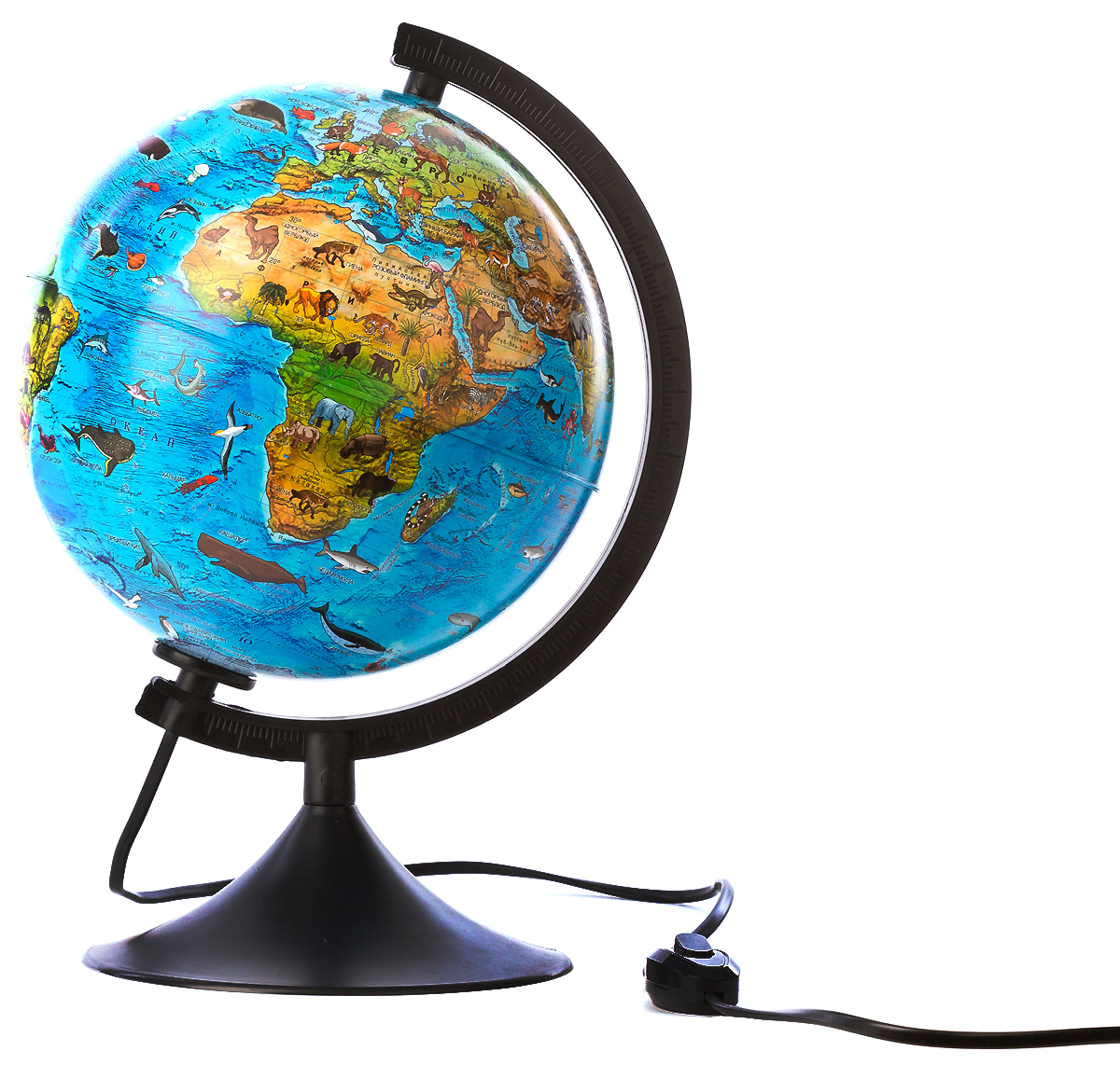 Globen Глобус Земли зоогеографический детский с подсветкой диаметр 21 см цвет подставки черныйFS-00897Зоогеографический глобус Земли Globen выполнен в высоком качестве, с четким и ярким изображением. Он дает представление о животных, обитающих в разных уголках планеты. На нем отображены названия материков, океанов и морей, крупных географических объектов, животные и некоторые виды растений, характерные для определенной местности.Глобус легко вращается вокруг своей оси, снабжен пластиковым меридианом с градусными отметками. Подставка изготовлена из пластика. Глобус имеет функцию подсветки от электрической сети. На кабеле питания имеется переключатель.Надписи на глобусе сделаны на русском языке. В комплект входит: глобус, подставка.