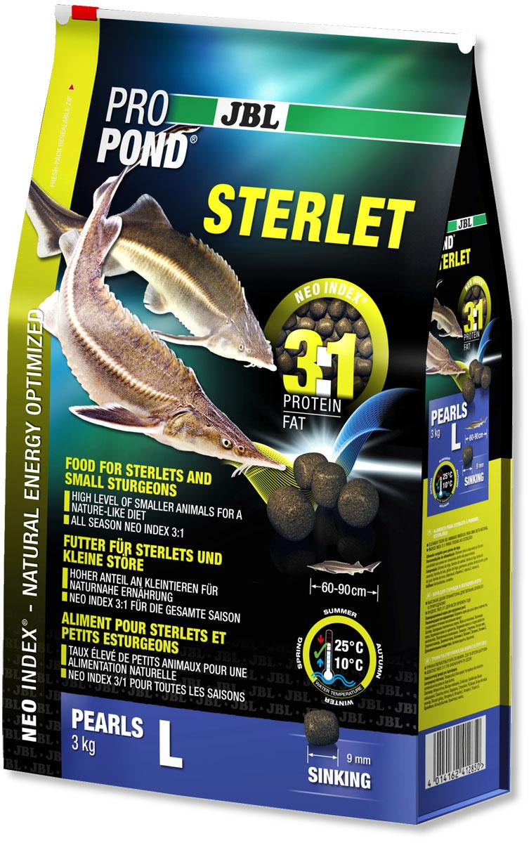 Корм JBL ProPond. Sterlet L для осетровых рыб большого размера, тонущие гранулы, 3 кг (6 л)008317Корм JBL ProPond. Sterlet L в виде тонущих гранул предназначен для осетровых рыб большого размера. Это основной корм с правильным соотношением белков и жиров 3:1 по индексу NEO Index, учитывающему температуру воды, функции, размер и возраст питомцев. Корм содержит лосось, креветки, кальмары, спирулину и гаммарус для природного рациона стерляди (при температуре воды 10-25°С). Размер корма L (9 мм) предназначен для рыб 60-90 см. Тонущие гранулы с 40% белка, 12% жира, 2% клетчатки и 8% золы. Маленькие гранулы хранятся в закрывающейся воздухо-, водо- и светонепроницаемой упаковке для сохранения качества. Осетровые - очень особые рыбы. Их форма тела уже указывает на их образ жизни: они плавают у дна и на ощупь усиками (химио-сенсорными органами) ищут в грунте мелких беспозвоночных, которыми питаются в природе. Корм JBL ProPond Sterlet подходит для такого способа кормления по составу (увеличена доля беспозвоночных) и свойствам, так как опускается на дно. Хотя осетр привыкает питаться на поверхности воды, такой способ кормления противоречит их естественному поведению, и возникает риск заглатывания воздуха. Осетровых всегда следует кормить специальным кормом, так как у него особый состав, и стерлядь может в борьбе за пищу неумышленно повредить костными пластинками слизистую оболочку кои. На практике можно давать корм золотым рыбкам и кои на поверхности в одной части пруда, а осетрам - тонущий корм в другой. Товар сертифицирован.