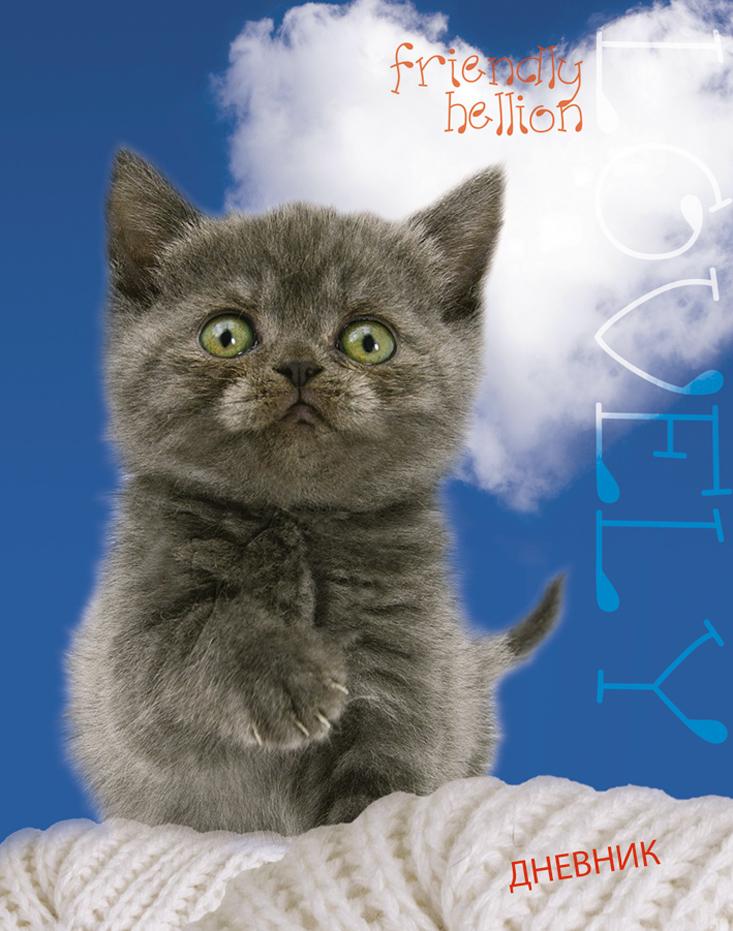 Апплика Дневник школьный для младших классов Удивленный котенок