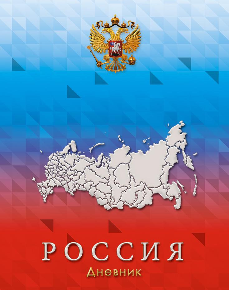 Апплика Дневник школьный Российская символика-13