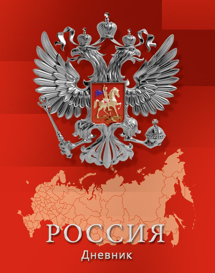 Апплика Дневник школьный Российская символика-12