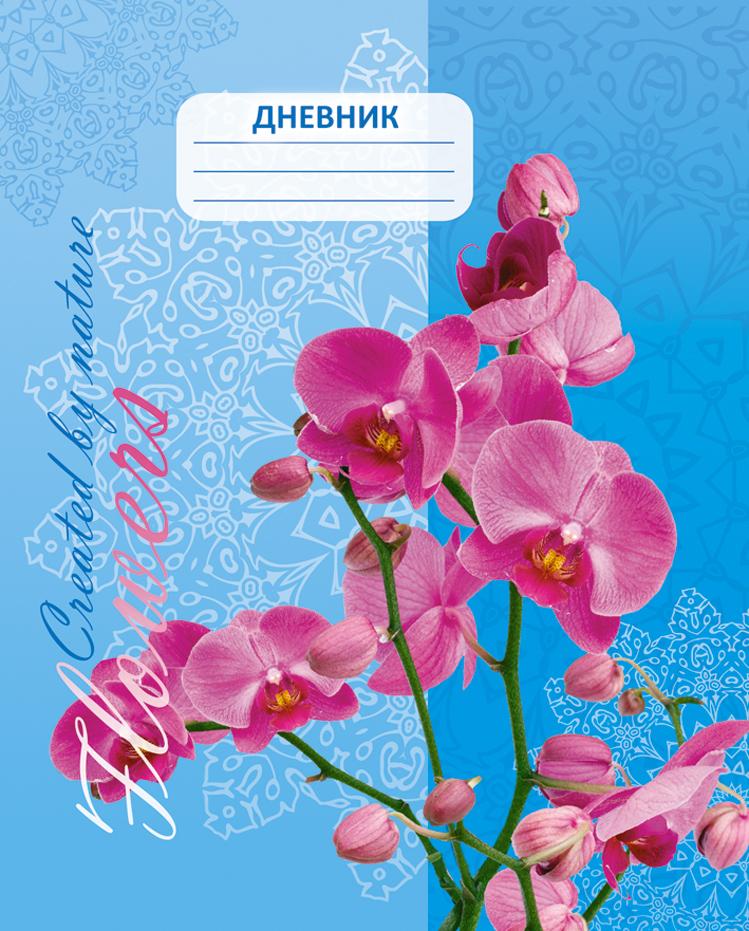 Апплика Дневник школьный Орхидея