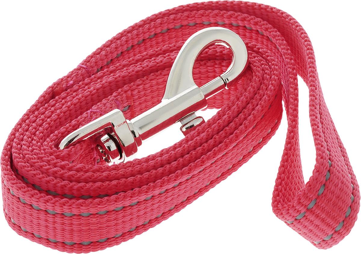 Поводок капроновый для собак Аркон, цвет: красный, ширина 2 см, длина 1 мпк1м20_красныйПоводок для собак Аркон изготовлен из высококачественного цветного капрона и снабжен металлическим карабином. Изделие отличается не только исключительной надежностью и удобством, но и привлекательным современным дизайном.Поводок - необходимый аксессуар для собаки. Ведь в опасных ситуациях именно он способен спасти жизнь вашему любимому питомцу. Иногда нужно ограничивать свободу своего четвероногого друга, чтобы защитить его или себя от неприятностей на прогулке. Длина поводка: 1 м.Ширина поводка: 2 см.
