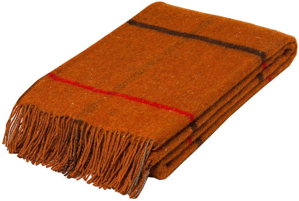 Плед Руно Аляска, цвет: коричневый, 140 х 200 см. 1-461-140(04)1-671-140(04)Плед Руно Аляска гармонично впишется в интерьер вашего дома и создаст атмосферу уюта и комфорта. Чрезвычайно мягкий и теплый плед с кистями изготовлен из натуральной овечьей шерсти. Высочайшее качество материала гарантирует безопасность не только взрослых, но и самых маленьких членов семьи.Плед - это такой подарок, который будет всегда актуален, особенно для ваших родных и близких, ведь вы дарите им частичку своего тепла!