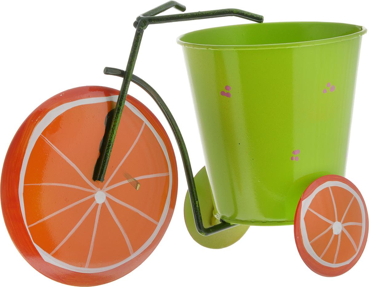Кашпо декоративное Феникс-Презент Апельсин, 22,5 х 10,5 х 14 см531-402Декоративное кашпо Феникс-Презент Апельсин выполнено из черного окрашенного металла в виде трехколесного велосипеда с красочным оформлением. Оригинальное кашпо предназначено для выращивания цветов, трав, растений. Благодаря такому кашпо вы сможете украсить вашу комнату, офис, сад и другие места. Общий размер изделия: 22,5 х 10,5 х 14 см.Диаметр кашпо: 10,5 см.Высота кашпо: 10 см.
