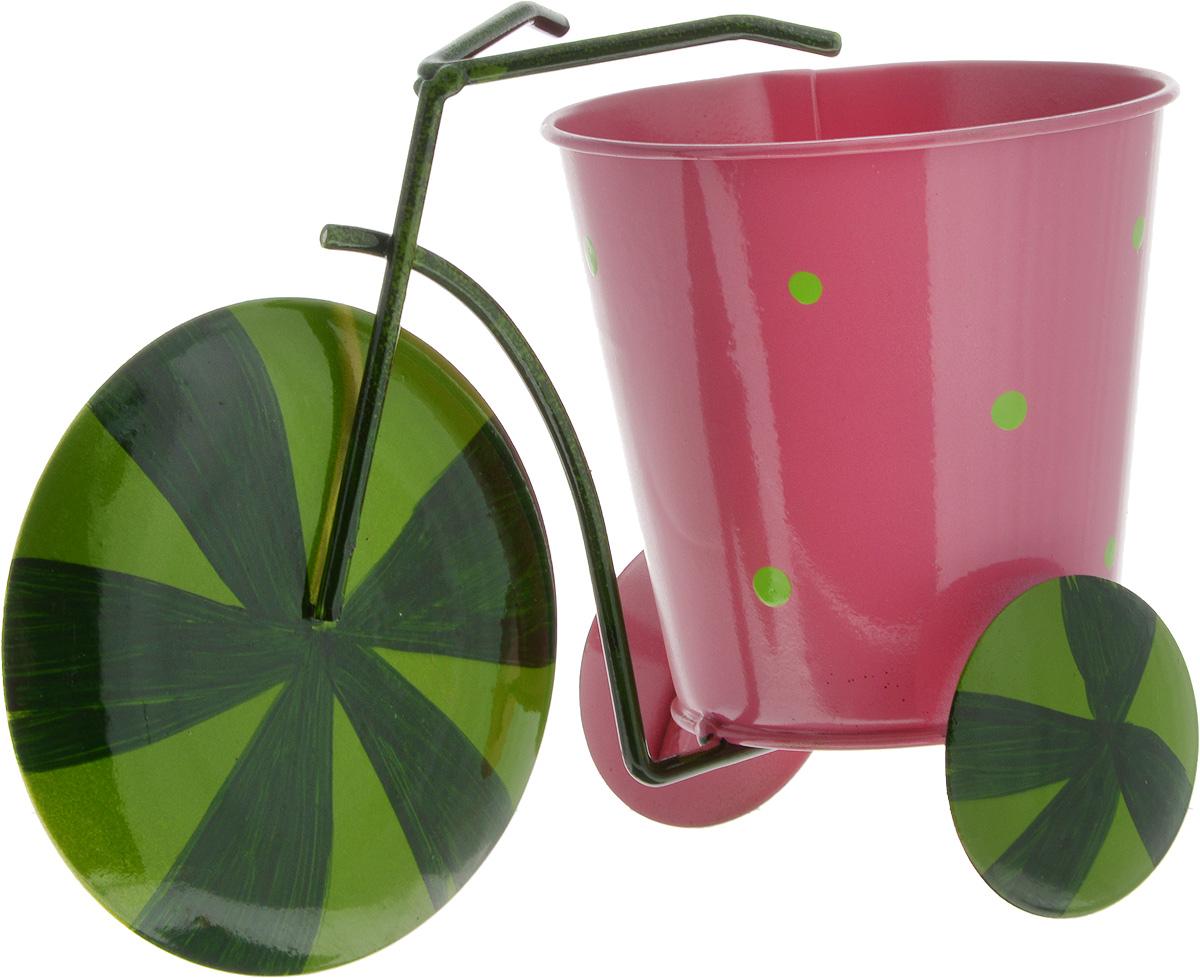 Кашпо декоративное Феникс-Презент Зеленый арбуз, 22,5 х 10,5 х 14 смING51010FГЛП_прозрачный голубой, белыйДекоративное кашпо Феникс-Презент Зеленый арбуз выполнено из черного окрашенного металла в виде трехколесного велосипеда с красочным оформлением. Оригинальное кашпо предназначено для выращивания цветов, трав, растений. Благодаря такому кашпо вы сможете украсить вашу комнату, офис, сад и другие места. Общий размер изделия: 22,5 х 10,5 х 14 см.Диаметр кашпо: 10,5 см.Высота кашпо: 10 см.