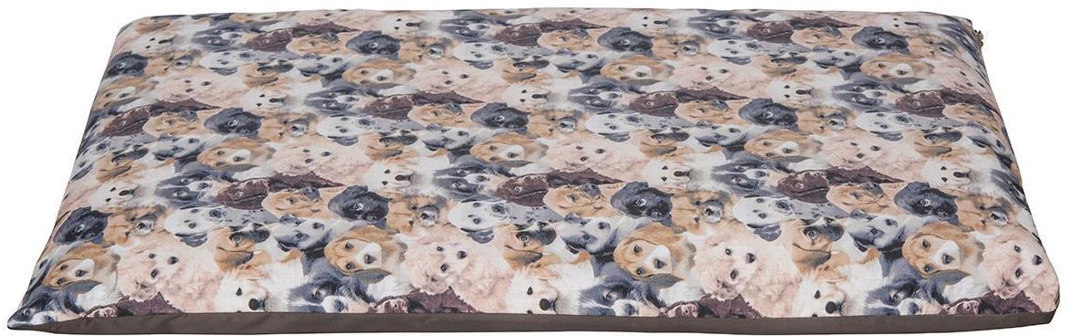 Матрас для животных Dogmoda Dogs, 73 x 47 x 7 см. DM-160344_серый0120710Матрас DOGS был разработан, чтобы создать комфортное место для отдыха вашей кошки. Не менее важной задачей было обеспечение простоты ухода за лежанкой. Потому нами было принято решение сделать ее двухслойной. Синтепоно-поролоновый наполнитель заключен в подкладочный чехол, поверх которого надевается второй чехол из полиэстера и хлопка.Преимущества созданного нами матраса:• комфортен для кошек, обладает достаточным размером, чтобы принять удобное положение;• прост в уходе — достаточно снять верхний чехол на застежке молнии и постирать его, чтобы изделие вновь выглядело как новое, даже если ваш домашний любимец принадлежит к длинношерстным породам;• конкурентная стоимость при превосходных пользовательских характеристиках.Размер матраса стандартный: длина 73 см, ширина 47 см, высота 7 см.