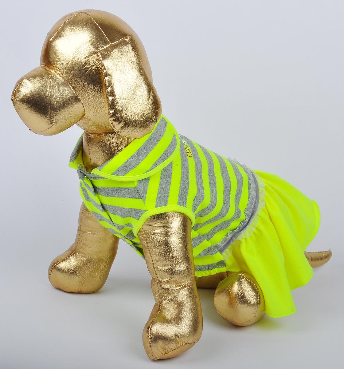 Платье для собак GLG Фэшн Ультра. Размер S0120710Платье для собак GLG Фэшн Ультра выполнено из вискозы. Рукава не ограничивают свободу движений, и собачка будет чувствовать себя в нем комфортно. Изделие застегивается с помощью кнопок..Модное и невероятно удобное платье защитит вашего питомца от пыли и насекомых на улице, согреет дома или на даче. Длина спины: 23-25 см Обхват груди: 31-33 см.