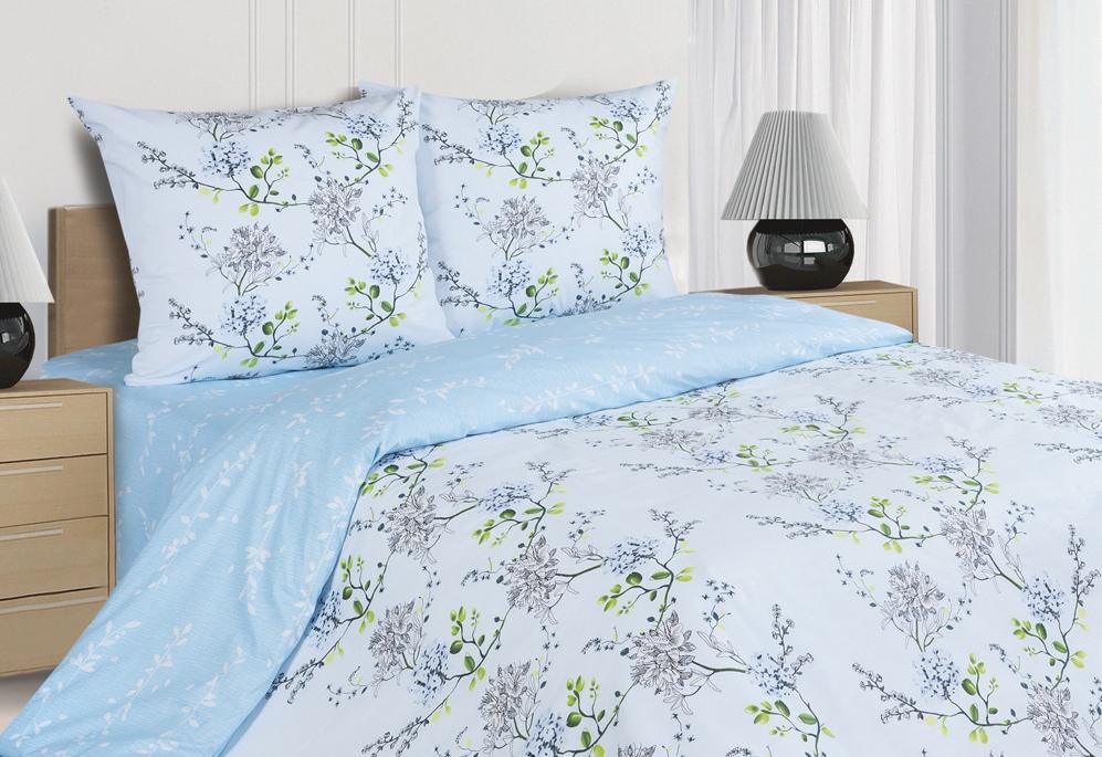 Комплект постельного белья Ecotex Поэтика Аделиза, цвет: голубой. 1,5 спальный10503Высококачественный поплин позволяет коже дышать в течение всей ночи, обладает расслабляющим эффектом. Насладившись полноценным сном, Вы проснетесь наутро с новым зарядом энергии и хорошего настроения.