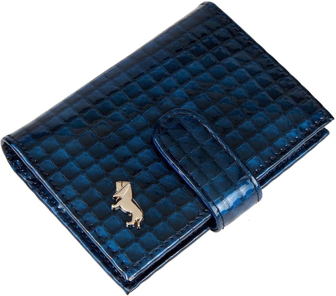 Визитница женская Labbra, цвет: синий. L053-5589DS2016-004-26Визитница торговый марки LABBRA из натуральной кожи. Модель закрывается на кнопку. Визитница вмещает 26 визитных карточек, имеется потайной кармашек.