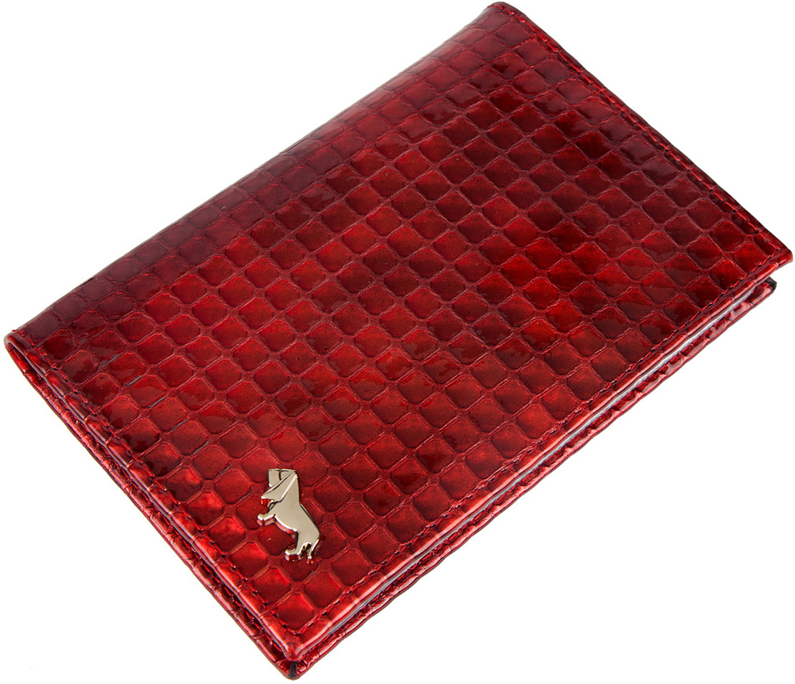 Обложка для автодокументов женская Labbra, цвет: красный. L053-161331172501Обложка для водительских документов торговой марки Labbra выполнена из натуральной лаковой кожи с декоративным тиснением. Внутри - блок из ПВХ с прозрачными файлами для документов.