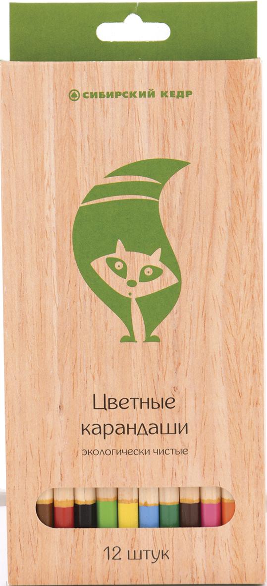 СКФ Набор цветных карандашей Сибирский кедр Eco 12 шт2010440Карандаши сделаны из Сибирского кедра, без какой либо химической обработки. Активно набирающая популярность тематика ЭКО. Европейский экодизайн, передающий натуральность материалов. Лаконичные цвета.
