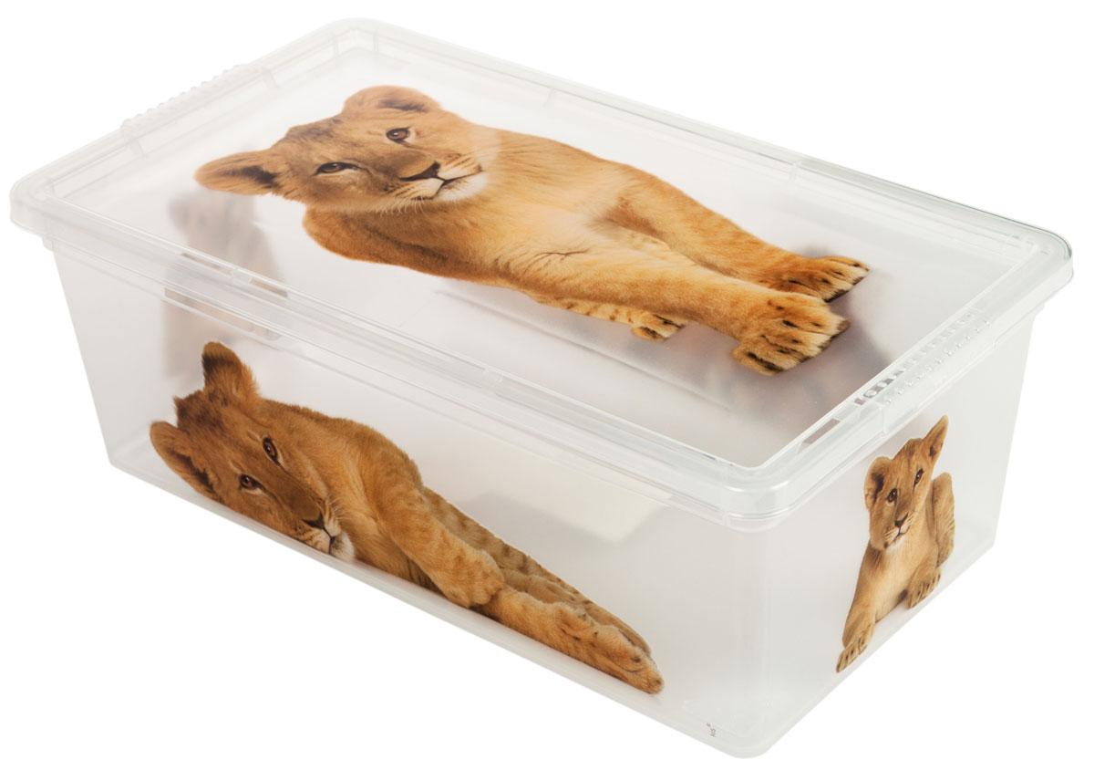 Контейнер для хранения ABM Дикие котята, 5 л74-0060Контейнер ABM Дикие котята выполнен из прочного полипропилена, пригодного и для контакта с пищевыми продуктами. Материал безопасен для здоровья, не токсичен, не имеет запаха, не вызывает аллергических реакций. Внешние стенки изделия декорированы изображением львят. В нем удобно хранить различные бытовые вещи, позволит сохранить их в порядке и защитит содержимое от пыли и грязи. Контейнер плотно закрывается крышкой.