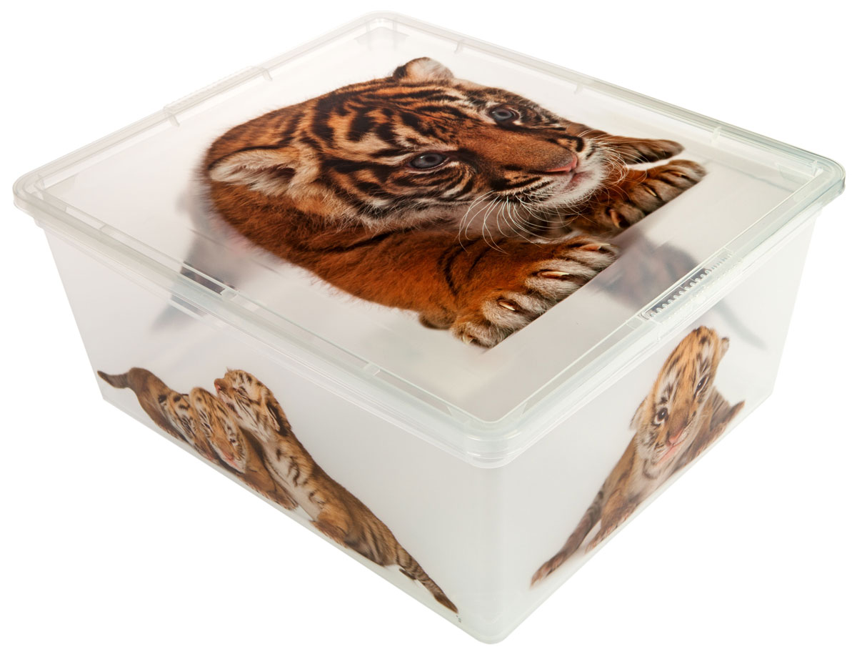 Контейнер для хранения ABM Дикие котята, 18 лRG-D31SКонтейнер ABM Дикие котята выполнен из прочного полипропилена, пригодного и для контакта с пищевыми продуктами. Материал безопасен для здоровья, не токсичен, не имеет запаха, не вызывает аллергических реакций. Внешние стенки изделия декорированы изображением тигрят. В нем удобно хранить различные бытовые вещи, позволит сохранить их в порядке и защитит содержимое от пыли и грязи. Контейнер плотно закрывается крышкой.