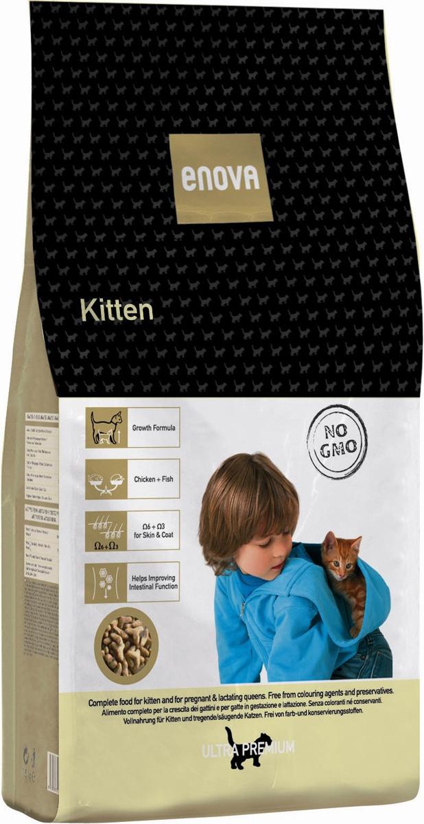 Сухой корм Enova Кет Киттен, для котят, беременных и кормящих кошек, 1,5 кг0120710Сбалансированное питание для котят, беременных и кормщих кошек. Корм разработан специально для животных в период активного роста. 3 главных источника животного белка - курица, рыба и яйцо. Омега-6+Омега-3 - правильное соотношение. Специальная смесь из растительных волокон. Благодаря высокой степени усвояемости, питательности и калорийности, корм ENOVA KITTEN отлично подходит для беременных и кормящих кошек.СОСТАВ: дегидратированное мясо курицы (мин.24%), рис, куриный жир, рисовый глютен, рыбная мука, мука из печени, белковый гидролизат, яичный порошок, льняное семя, сушеная свекольная пульпа, целлюлоза, рисовые отруби, сухие дрожжи, рыбий жир, порошок цикория, калия хлорид, натрия хлорид. АНТИОКСИДАНТЫ:токоферолы, пропилгаллат. АНАЛИЗ: белок 33%, жиры 22,5%, клетчатка 3,5%, зола 7,5%, кальций 1,3%, фосфор 1,2%, магний 0,09%, влажность 10%, Омега6 2,8%, Омега3 0,8%. ВИТАМИНЫ И ДОБАВКИ НА 1 КГ:Витамин А - 16,500МЕ, Витамин D3 - 1,500 МЕ, витамин Е (альфа-токоферол) - 150 мг, Медь (пятиводный сульфат меди) - 10 мг, Окись цинка - 30 мг, Цинка хелат - 40 мг, Йод - 2 мг, Селен - 0,2 мг, Таурин - 1,300 мг. Энергетическая ценность: 4084 Ккал/кг