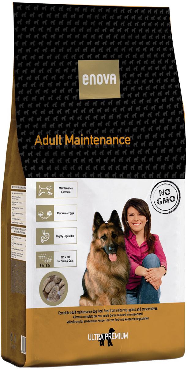 Сухой корм Enova Дог Эдалт Мантенанс, для взрослых собак всех пород, 15 кг0120710Сбалансированное питание для взрослых собак всех пород. Сбалансированная формула для взрослых собак всех размеров и пород. Наличие только качественных белков животного происхождения. Высокая степень усвояемости. Омега-6+омега-3 - правильное соотношени.СОСТАВ: дегидратированное мясо курицы (мин.27,5%), рис (мин.27%), коричневый рис, ячмень, куриный жир, яичный порошок, сушеная свекольная пульпа, рисовые отруби, гидролизат белка, льняное семя, дикальций фосфат, рыбий жир, сушеные дрожжи, целлюлоза, хлорид калия, хлорид натрия, экстракт розмарина. АНТИОКСИДАНТЫ: токоферолы, пропилгаллат. АНАЛИЗ: белок 26%, жиры 14%, клетчатка 2,5%, зола 7,5%, кальций 1,3%, фосфор 1%, влажность 10%, Омега6 2,2%, Омега3 0,55%. ВИТАМИНЫ И ДОБАВКИ НА 1 КГ: Витамин А - 12,000 МЕ, Витамин D3 - 1,200 МЕ, Витамин Е - 70 мг, Медь - 10 мг, Цинк - 70 мг, Йодин - 2 мг, Селениум - 0,2 мг. Энергетическая ценность: 3750 Ккал /кг