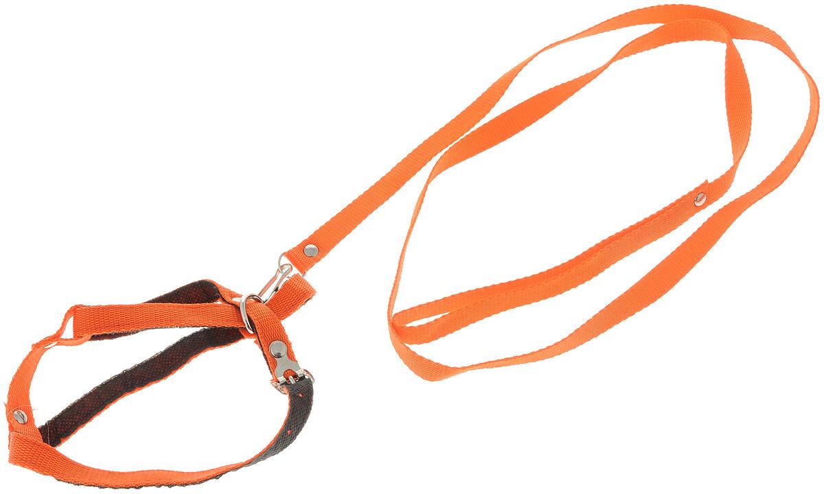 Шлейка для кошек Adel-Cat, с поводком, цвет: оранжевый, ширина 1,5 см, обхват груди 45-35 см990908_оранжевыйШлейка Adel-Cat, изготовленная из прочного нейлона, подходит для кошек. Крепкие металлические элементы делают ее надежной и долговечной. Шлейка - это альтернатива ошейнику. Правильно подобранная шлейка не стесняет движения питомца, не натирает кожу, поэтому животное чувствует себя в ней уверенно и комфортно. Размер регулируется при помощи пряжки. Изделие отличается высоким качеством, удобством и универсальностью.В комплекте нейлоновый поводок с металлическим карабином.Обхват шеи в самом широком месте: 32-22см. Обхват груди за передними лапами: 45-35см. Ширина шлейки: 1,5 см.Длина поводка: 145 см.