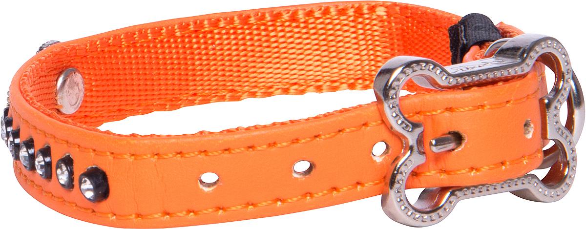 Ошейник для собак Rogz Luna, цвет: оранжевый, ширина 1,6 см. Размер M0120710Ошейник для собак Rogz Luna обладает нежнейшей мягкостью и гибкостью.Авторский дизайн, яркие цвета, изысканные декоративные элементы из страз.Ошейник подчеркнет индивидуальность вашей собаки.