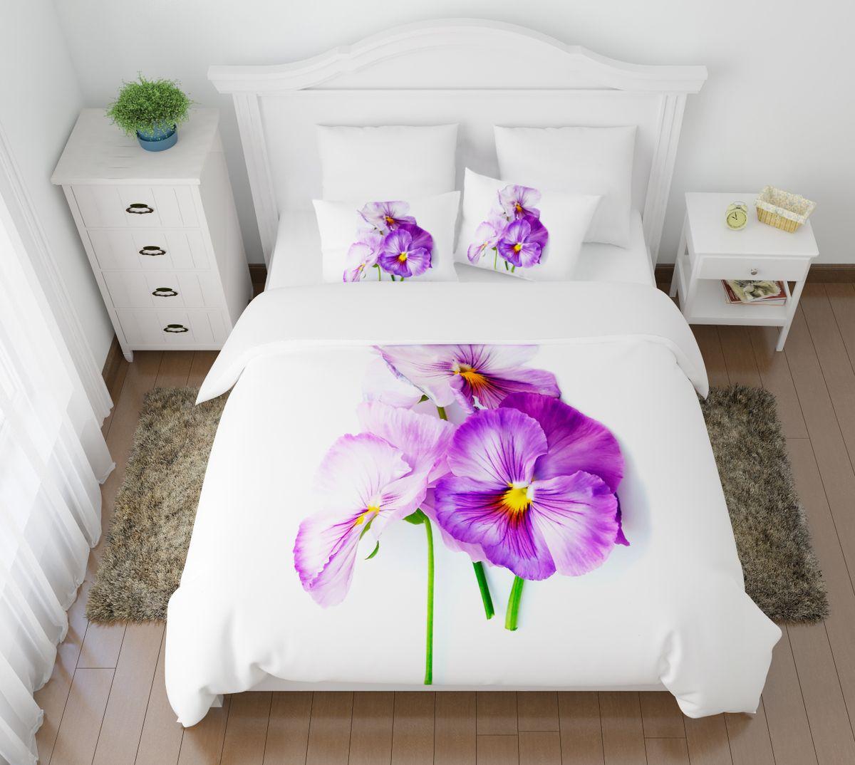 Комплект белья Сирень Виола необыкновенная, 2-спальный, наволочки 50х70VCA-00Комплект постельного белья Сирень 2-х спальный выполнен из прочной и мягкой ткани. Четкий и стильный рисунок в сочетании с насыщенными красками делают комплект постельного белья неповторимой изюминкой любого интерьера. Постельное белье идеально подойдет для подарка. Идеальное соотношение смешенной ткани и гипоаллергенных красок это гарантия здорового, спокойного сна. Ткань хорошо впитывает влагу, надолго сохраняет яркость красок. Цвет простыни, пододеяльника, наволочки в комплектации может немного отличаться от представленного на фото.В комплект входят: простыня - 200х220см; пододельяник 175х210 см; наволочка - 50х70х2шт. Постельное белье легко стирать при 30-40 градусах, гладить при 150 градусах, не отбеливать.Рекомендуется перед первым изпользованием постирать.