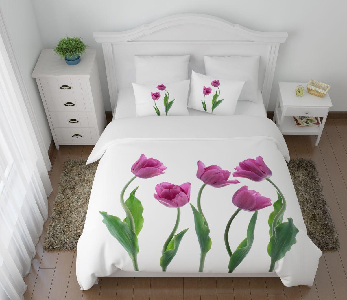 Комплект белья Сирень Крупные тюльпаны, 2-спальный, наволочки 50х704630003364517Комплект постельного белья Сирень выполнен из прочной и мягкой ткани. Четкий и стильный рисунок в сочетании с насыщенными красками делают комплект постельного белья неповторимой изюминкой любого интерьера.Постельное белье идеально подойдет для подарка. Идеальное соотношение смешенной ткани и гипоаллергенных красок - это гарантия здорового, спокойного сна. Ткань хорошо впитывает влагу, надолго сохраняет яркость красок.В комплект входят: простынь, пододеяльник, две наволочки. Постельное белье легко стирать при 30-40°С, гладить при 150°С, не отбеливать. Рекомендуется перед первым использованием постирать.УВАЖАЕМЫЕ КЛИЕНТЫ! Обращаем ваше внимание, что цвет простыни, пододеяльника, наволочки в комплектации может немного отличаться от представленного на фото.