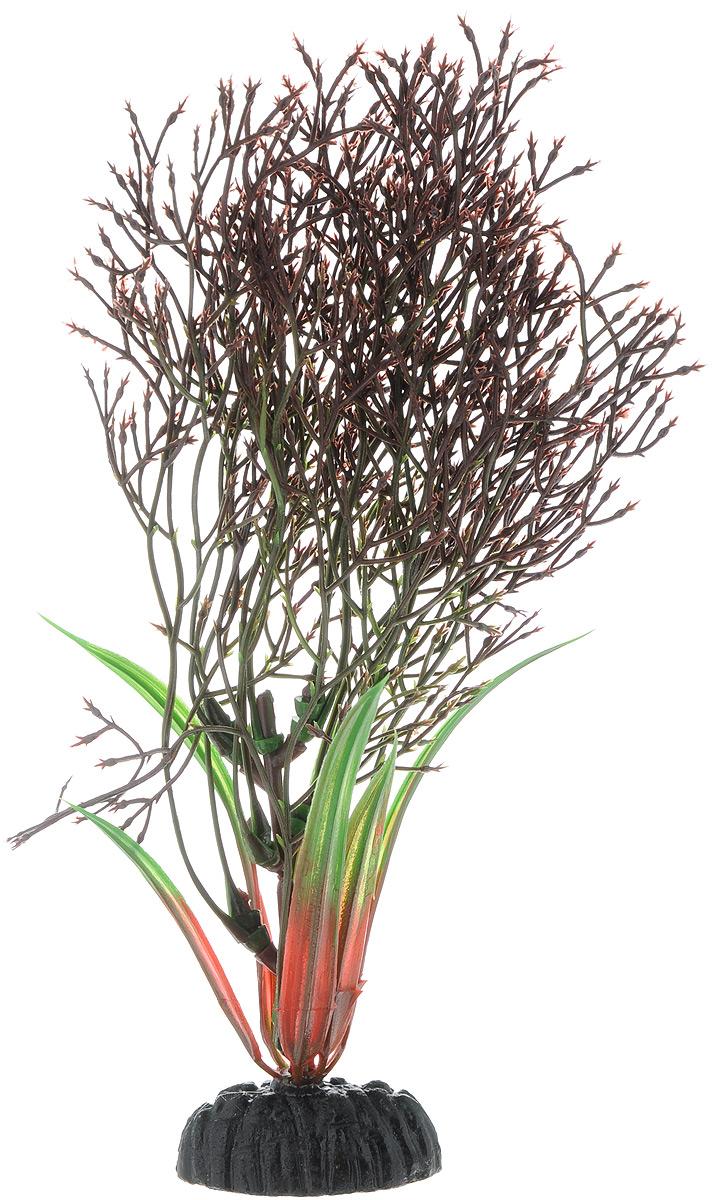 Растение для аквариума Barbus Горгонария, пластиковое, цвет: коричневый, высота 20 см0120710Растение Barbus Горгонария, выполненное из качественного пластика, станет оригинальным украшением вашего аквариума. Пластиковое растение идеально подходит для дизайна всех видов аквариумов. Оно абсолютно безопасно, нейтрально к водному балансу, устойчиво к истиранию краски, подходит как для пресноводного, так и для морского аквариума. Растение Barbus поможет вам смоделировать потрясающий пейзаж на дне вашего аквариума или террариума. Высота растения: 20 см.