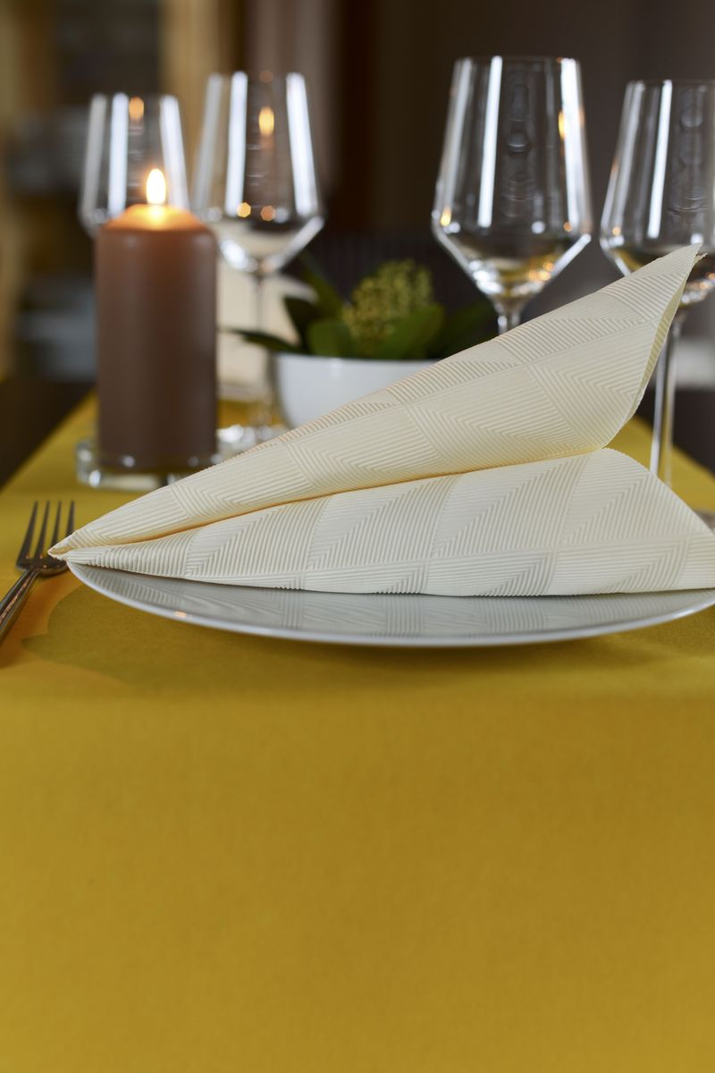 Салфетки бумажные Duni Lin, цвет: бежевый, 40 смV30 AC DCТрехслойные бумажные салфетки изготовлены из экологически чистого, высококачественного сырья - 100% целлюлозы. Салфетки выполнены в оригинальном и современном стиле, прекрасно сочетаются с любым интерьером и всегда будут прекрасным и незаменимым украшением стола.