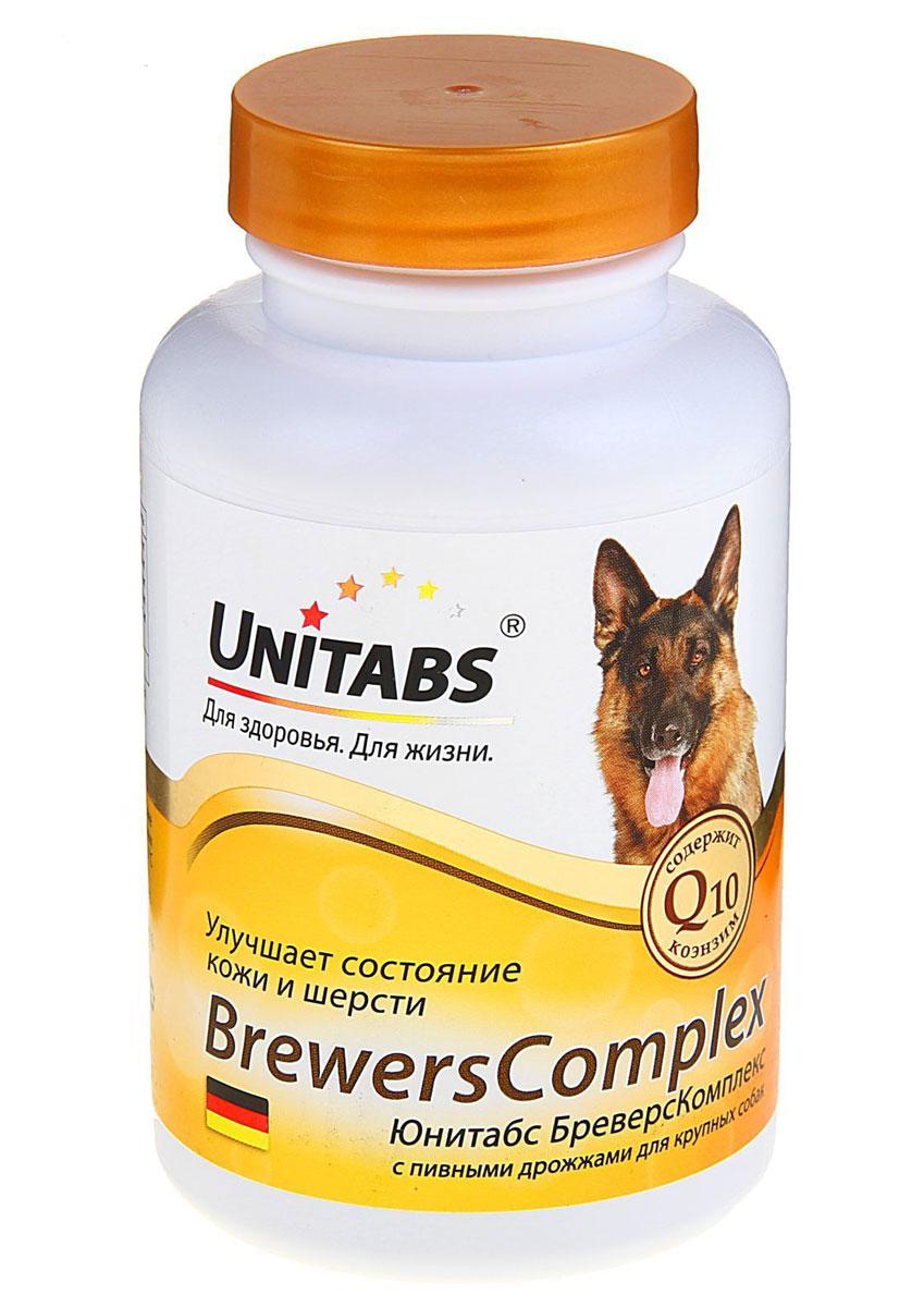 Кормовая добавка для крупных собак Unitabs Brevers Complex, для кожи и шерсти, с пивными дрожжами, 100 шт0120710Витаминно-минеральная кормовая добавка Unitabs Brevers Complex обеспечивает здоровье и гладкость кожи, обновление ее клеток. Способствует активному росту, устранению ломкости и сухости шерсти. Укрепляет иммунную систему. Коэнзим Q10, входящий в состав комплекса, является незаменимым элементом для жизнедеятельности организма вашего питомца.Состав: дрожжи пивные, мука из зародышей пшеницы, мясокостная мука, минеральные вещества, витамины, соевый лецитин, желатин, хлорид натрия, рыбий жир, сухое обезжиренное молоко, лактоза ароматизатор Говядина, витамин Е, коэнзим Q10, лимонная кислота, сорбат калия, вода.Количество: 100 таблеток. Товар сертифицирован.