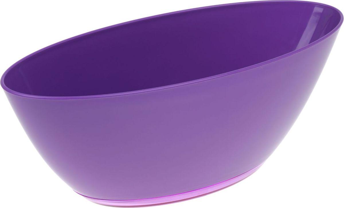 Кашпо JetPlast Лодочка, с поддоном, цвет: фиолетовый, 3 л531-105Кашпо «Лодочка» подойдёт для тех, кто хочет комбинировать растения. Благодаря продолговатой форме вы сможете посадить два, а то и три маленьких цветка. Такой приём заметно освежит интерьер. Особенности: -вместительность и малый вес-подходит для дома и сада-устойчиво к перепадам температуры-отличается повышенной влагостойкостью. Грамотно подобранный аксессуар для цветов может значительно преобразить помещение, сделать его более уютным и современным.