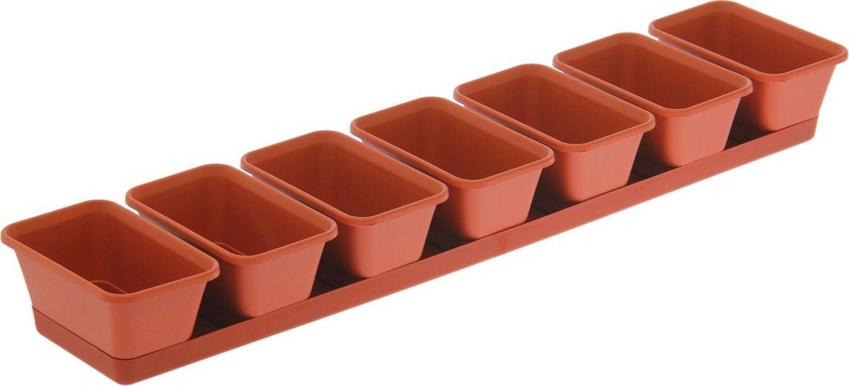 Набор кашпо Darel, с поддоном, 7 предметов1570090Набор кашпо Darel - отличное решение для озеленения. Балконные ящички получили продолжение в виде набора отдельных горшков, в которых можно выращивать различные растения, создавая тем самым уникальную цветочную композицию.Изделия выполнены из высококачественного пластика.Размер набора: 73 x 16 x 8,5 см.
