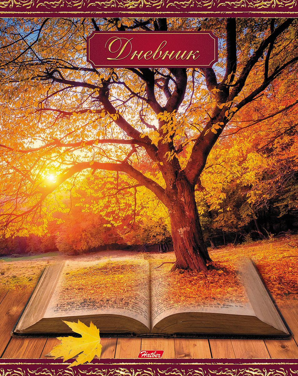Hatber Дневник школьный Книга странствий72523WDДневник в твердой обложке с поролоном очень удобен в использовании. В качестве дизайна подобрана самая современная и интересная тема.