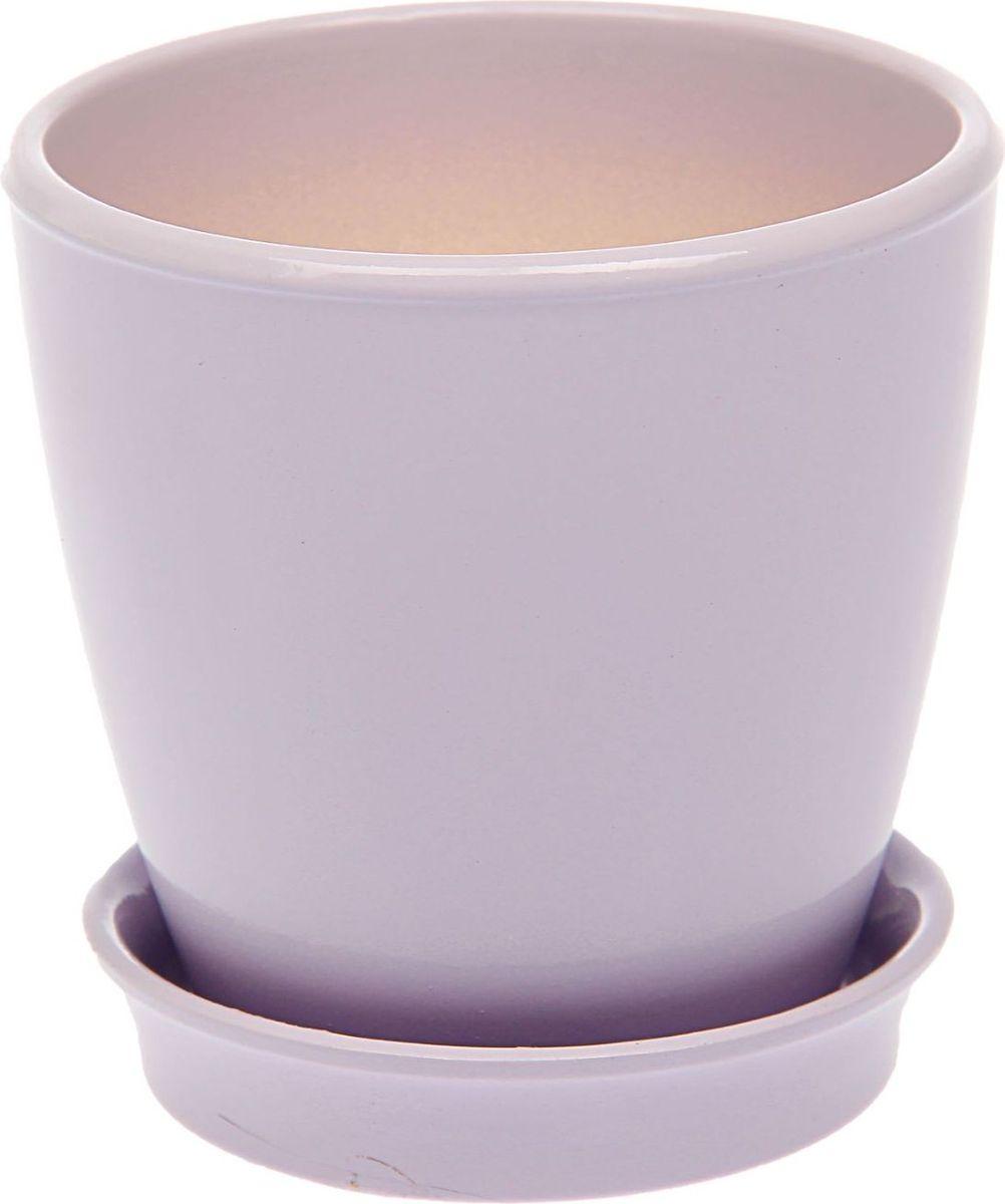 Кашпо Керамика ручной работы Виктория, цвет: лавандовый, 0,6 л531-105Кашпо серии «Каменный цветок» выполнено из белой глины методом формовки и покрыто лаком. Керамическая ёмкость имеет объём, оптимальный для создания наилучших условий развития большинства растений.Устойчивый глубокий поддон защитит поверхность стола или подставки от жидкости.Благодаря строгим стандартам производства изделия отличаются правильной формой, отсутствием дефектов, имеют достаточную тяжесть для надёжной фиксации конструкции.Окраска моделей не восприимчива к прямым солнечным лучам, а в цветовой гамме преобладают яркие и насыщенные оттенки.Красота, удобство и долговечность кашпо серии «Каменный цветок» порадует любителей высококачественных аксессуаров для комнатных растений.