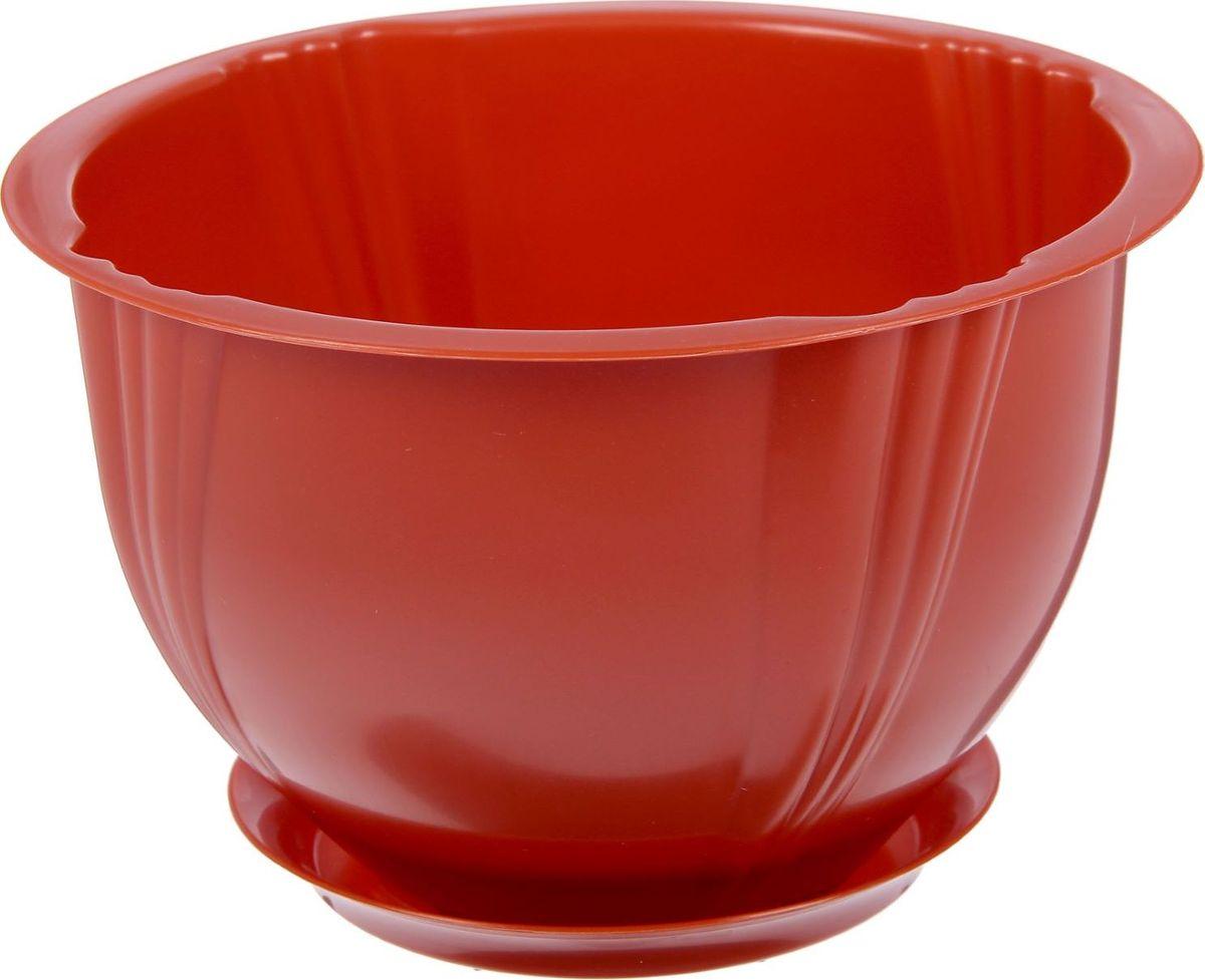 Кашпо Berossi Diana, с поддоном, цвет: терракотовый, 1,8 л80663Кашпо — это не просто ёмкость для выращивания комнатных растений, но и важный элемент декора.Посадите растение в Кашпо с поддоном 1,8 л Diana, цвет терракотовый! Его интересная форма дополнит интерьер, а качественный материал будет радовать вас долгие годы. Пластик полностью безопасен и не вступает в реакцию с почвой и корнями растения. Помимо этого, горшокЛёгкий, что делает удобной его транспортировку и эксплуатацию.Практичный: можно использовать для большинства комнатных растений. Цельный — вам не потребуются дпоолнительные приспособления и элементы.