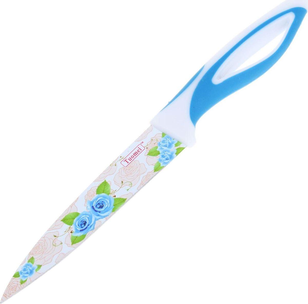 Нож Доляна Райский сад, с антиналипающим покрытием, цвет: голубой, длина лезвия 12,5 см1273097Нож Доляна Райский сад отлично подойдет для ежедневной нарезки продуктов. Лезвие ножа выполнено из нержавеющей стали с антиналипающим покрытием. Надежная сталь обеспечивает длительный срок службы и высокую прочность. Изделие не впитывает посторонние запахи, не вступает в реакции с продуктами. Удобная ручка, выполненная из пластика с силиконовыми вставками, предохраняет руки от усталости и обеспечивает надежный хват. Нож легко моется и требует минимального ухода. Яркий дизайн лезвия сделает такой нож настоящим украшением кухни.Длина ножа: 23 см.