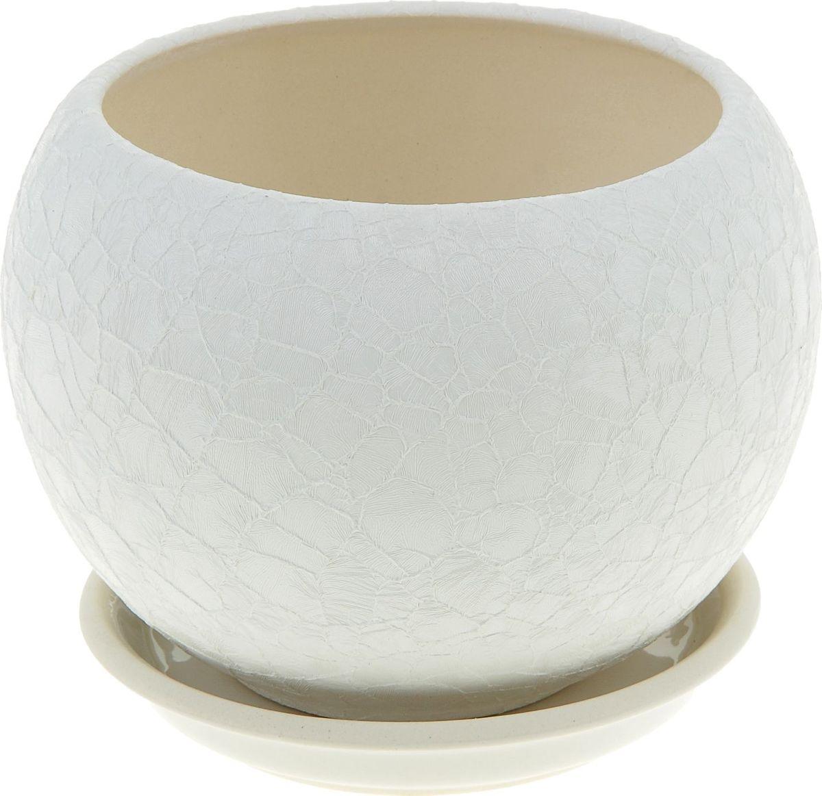 Кашпо Керамика ручной работы Шар, цвет: белый, 1,4 л1004900000360Комнатные растения — всеобщие любимцы. Они радуют глаз, насыщают помещение кислородом и украшают пространство. Каждому из них необходим свой удобный и красивый дом. Кашпо из керамики прекрасно подходят для высадки растений: за счёт пластичности глины и разных способов обработки существует великое множество форм и дизайновпористый материал позволяет испаряться лишней влагевоздух, необходимый для дыхания корней, проникает сквозь керамические стенки! #name# позаботится о зелёном питомце, освежит интерьер и подчеркнёт его стиль.