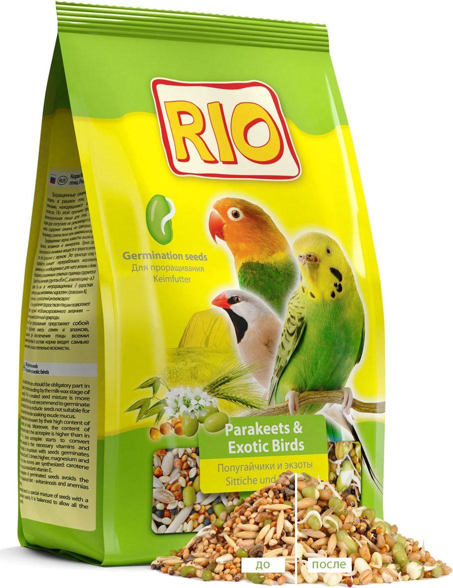 Корм для волнистых и экзотических птиц RIO, для проращивания, 500 г19516Корм для волнистых и экзотических птиц RIO предназначен для проращивания. Проращенные семена и злаки обязательно должны входить в рацион птиц. В природе птицы питаются семенами, находящимися в стадии молочно-восковой спелости. По этой причине проращенный корм - более физиологичная пища для птиц. Проращивать основной корм для попугаев не рекомендуется, поскольку зерновая смесь содержит семена, не пригодные для замачивания. Например, семена льна при замачивании выделяют слизь.Проращенные зерна известны высоким содержанием белков, витаминов и минералов. Причем, содержание биологически значимых веществ в проростке увеличивается по сравнению с зерном. Это происходит, поскольку проросток начинает перерабатывать микроэлементы, аминокислоты в необходимые для него витамины и белки. Например, по сравнению с семенами, в проращенных семенах пшеницы содержится витаминов группы В и С в 5 раз больше, магния и цинка - в 3 раза. Синтезируются новые витамины: появляется каротин (провитамин А), а также витамин Е - природный антиоксидант.Регулярное потребление проростков птицей позволяет избежать последствий несбалансированного питания - авитаминозов и анемий различной природы.Корм для волнистых и экзотических птиц RIO представляет собой специально подобранную смесь семян и злаков, сбалансированную для обеспечения птицы всеми необходимыми веществами. В состав корма вошли самые качественные семена с высокой степенью всхожести.Товар сертифицирован.