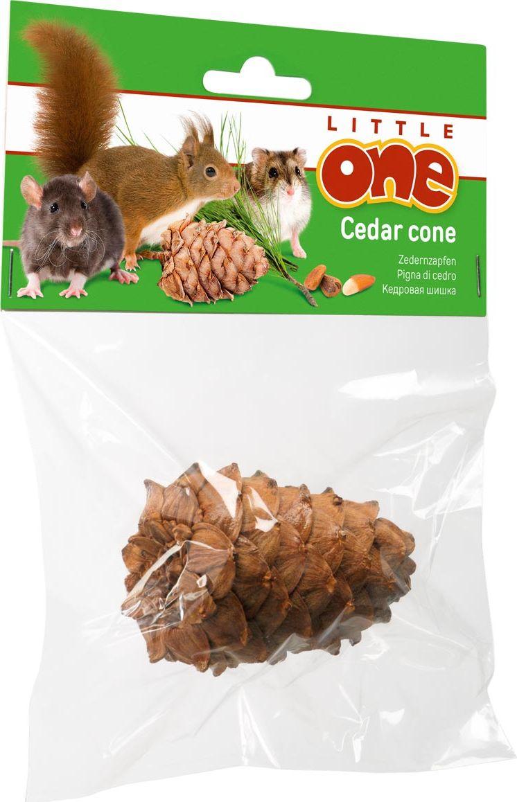 Лакомство-игрушка для грызунов Little One Кедровая шишка, натуральная, с орешками0120710Лакомство-игрушка для грызунов Little One Кедровая шишка является прекрасной игрушкой для декоративных животных. Разгрызая лесные шишки, зверьки стачивают зубы и получают полезные питательные вещества, содержащиеся в орешках. Кедровый орех богат антиоксидантами, витаминами и минеральными веществами. Лакомство-игрушка Little One Кедровая шишка высушена специальным методом, позволяющим значительно снизить содержание смол.Товар сертифицирован.