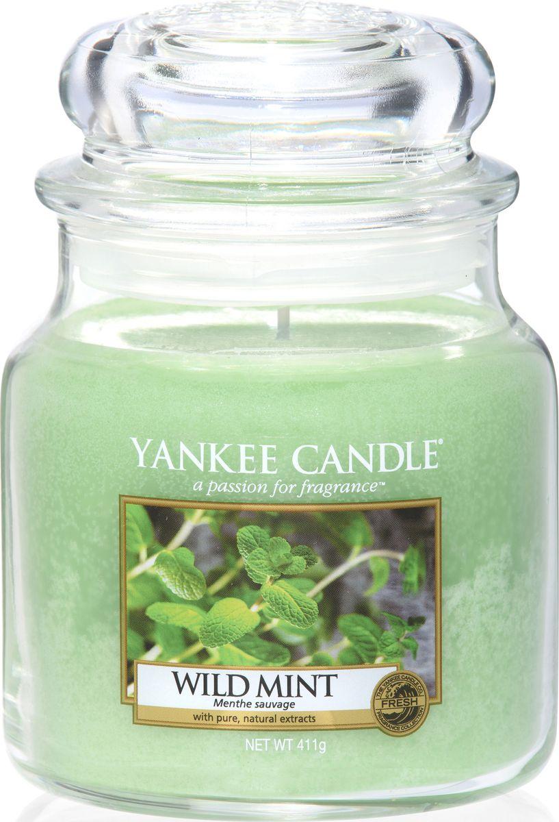 Ароматическая свеча Yankee Candle Дикая мята / Wild Mint, 65-90 ч41619Листья дикой мяты - свежий, прохладный, бодрящий аромат.Верхняя нота: Листья Дикой МятыСредняя нота: Свежая МятаБазовая нота: Мускус, Сандаловое Дерево