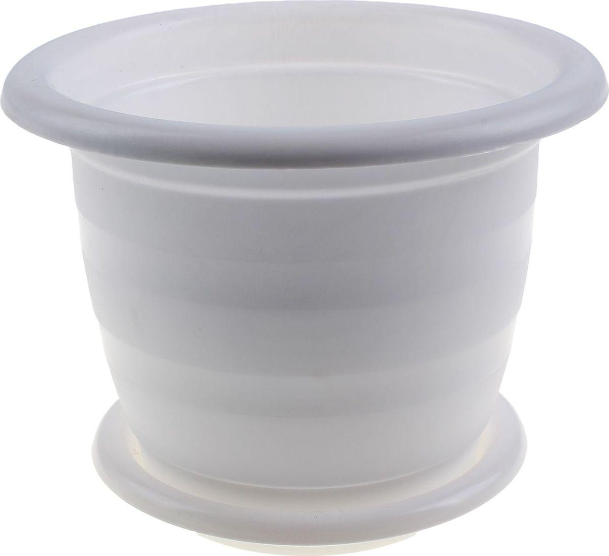 Горшок для цветов Альтернатива Виола, с поддоном, цвет: белый, 1 л531-401Любой, даже самый современный и продуманный интерьер будет не завершённым без растений. Они не только очищают воздух и насыщают его кислородом, но и заметно украшают окружающее пространство. Такому полезному члену семьи просто необходимо красивое и функциональное кашпо, оригинальный горшок или необычная ваза! Мы предлагаем - Горшок для цветов 1 л Виола, с поддоном, цвет белый! Оптимальный выбор материала пластмасса! Почему мы так считаем? Малый вес. С лёгкостью переносите горшки и кашпо с места на место, ставьте их на столики или полки, подвешивайте под потолок, не беспокоясь о нагрузке. Простота ухода. Пластиковые изделия не нуждаются в специальных условиях хранения. Их легко чистить достаточно просто сполоснуть тёплой водой. Никаких царапин. Пластиковые кашпо не царапают и не загрязняют поверхности, на которых стоят. Пластик дольше хранит влагу, а значит растение реже нуждается в поливе. Пластмасса не пропускает воздух корневой системе растения не грозят резкие перепады температур. Огромный выбор форм, декора и расцветок вы без труда подберёте что-то, что идеально впишется в уже существующий интерьер. Соблюдая нехитрые правила ухода, вы можете заметно продлить срок службы горшков, вазонов и кашпо из пластика: всегда учитывайте размер кроны и корневой системы растения (при разрастании большое растение способно повредить маленький горшок)берегите изделие от воздействия прямых солнечных лучей, чтобы кашпо и горшки не выцветалидержите кашпо и горшки из пластика подальше от нагревающихся поверхностей. Создавайте прекрасные цветочные композиции, выращивайте рассаду или необычные растения, а низкие цены позволят вам не ограничивать себя в выборе.