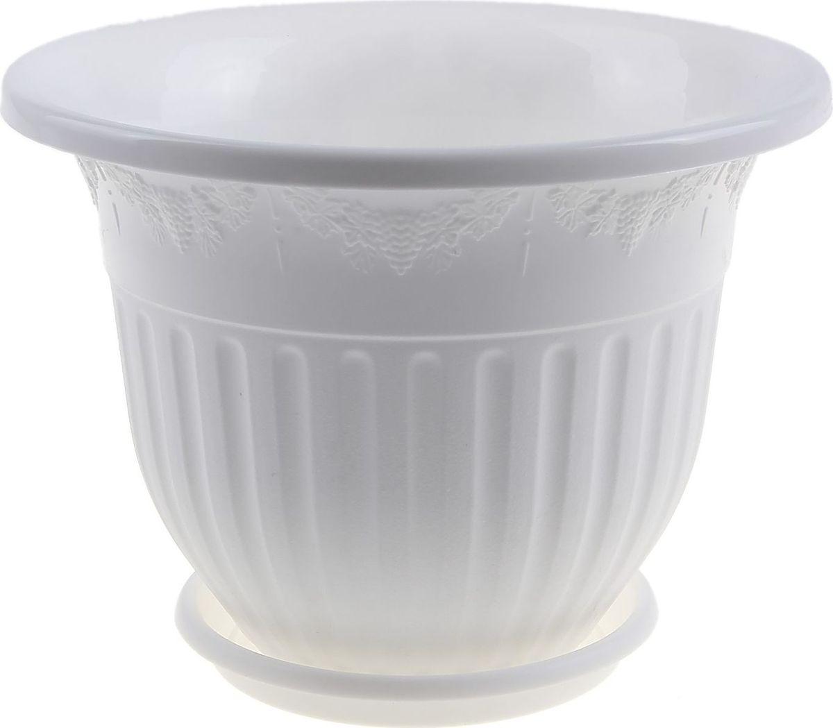 Кашпо Альтернатива Лозанна, с поддоном, цвет: белый, 1,5 л531-401Любой, даже самый современный и продуманный интерьер будет не завершённым без растений. Они не только очищают воздух и насыщают его кислородом, но и заметно украшают окружающее пространство. Такому полезному члену семьи просто необходимо красивое и функциональное кашпо, оригинальный горшок или необычная ваза! Мы предлагаем - Горшок-кашпо 1,5 л Лозанна, поддон, цвет белый! Оптимальный выбор материала пластмасса! Почему мы так считаем? Малый вес. С лёгкостью переносите горшки и кашпо с места на место, ставьте их на столики или полки, подвешивайте под потолок, не беспокоясь о нагрузке. Простота ухода. Пластиковые изделия не нуждаются в специальных условиях хранения. Их легко чистить достаточно просто сполоснуть тёплой водой. Никаких царапин. Пластиковые кашпо не царапают и не загрязняют поверхности, на которых стоят. Пластик дольше хранит влагу, а значит растение реже нуждается в поливе. Пластмасса не пропускает воздух корневой системе растения не грозят резкие перепады температур. Огромный выбор форм, декора и расцветок вы без труда подберёте что-то, что идеально впишется в уже существующий интерьер. Соблюдая нехитрые правила ухода, вы можете заметно продлить срок службы горшков, вазонов и кашпо из пластика: всегда учитывайте размер кроны и корневой системы растения (при разрастании большое растение способно повредить маленький горшок)берегите изделие от воздействия прямых солнечных лучей, чтобы кашпо и горшки не выцветалидержите кашпо и горшки из пластика подальше от нагревающихся поверхностей. Создавайте прекрасные цветочные композиции, выращивайте рассаду или необычные растения, а низкие цены позволят вам не ограничивать себя в выборе.