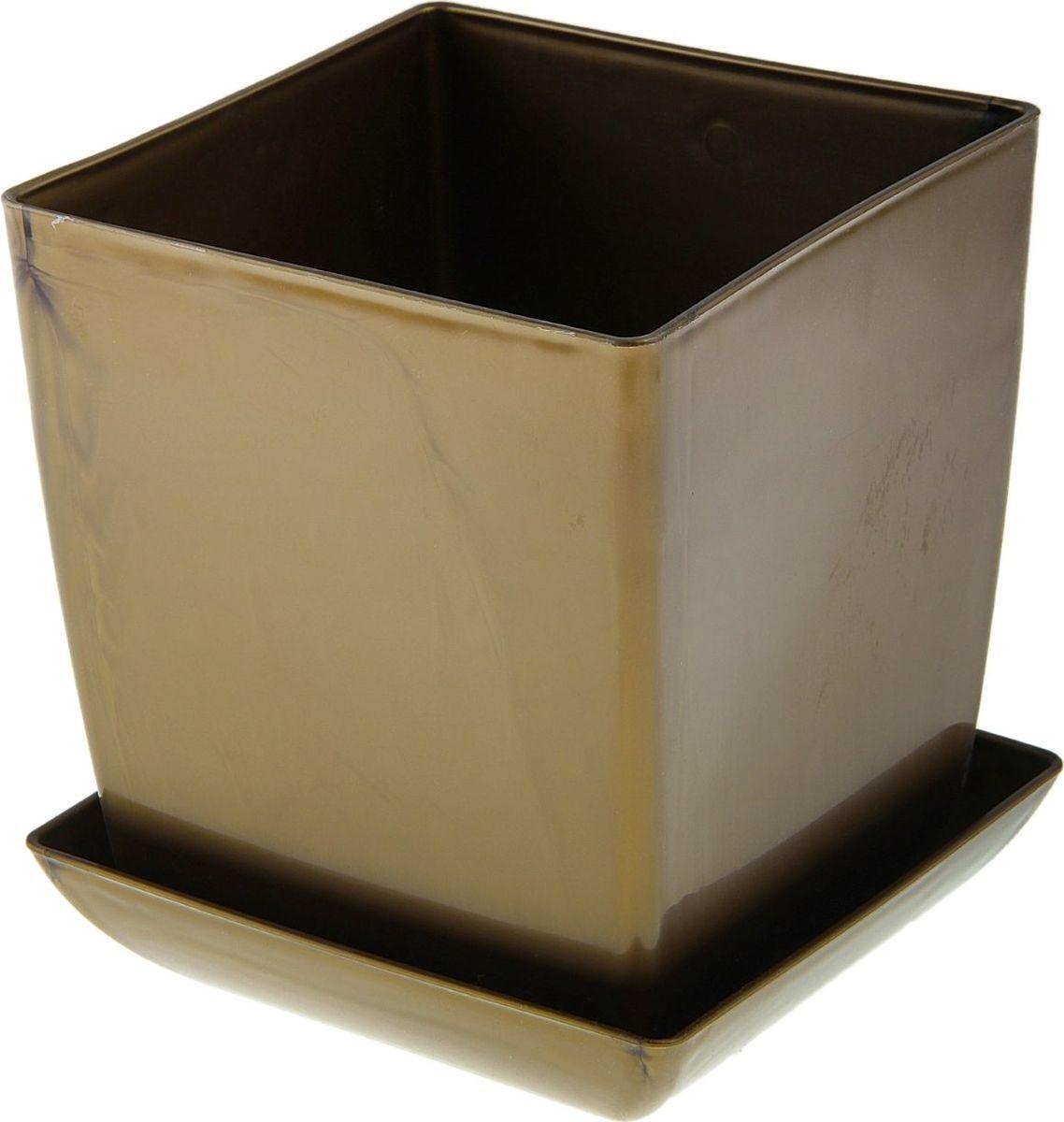 Горшок для цветов Мегапласт Квадрат, с поддоном, цвет: золотой, 3,5 л531-105Любой, даже самый современный и продуманный интерьер будет не завершённым без растений. Они не только очищают воздух и насыщают его кислородом, но и заметно украшают окружающее пространство. Такому полезному члену семьи просто необходимо красивое и функциональное кашпо, оригинальный горшок или необычная ваза! Мы предлагаем - Горшок для цветов с поддоном 16х16 см Квадрат 3,5 л, цвет золотой! Оптимальный выбор материала пластмасса! Почему мы так считаем? Малый вес. С лёгкостью переносите горшки и кашпо с места на место, ставьте их на столики или полки, подвешивайте под потолок, не беспокоясь о нагрузке. Простота ухода. Пластиковые изделия не нуждаются в специальных условиях хранения. Их легко чистить достаточно просто сполоснуть тёплой водой. Никаких царапин. Пластиковые кашпо не царапают и не загрязняют поверхности, на которых стоят. Пластик дольше хранит влагу, а значит растение реже нуждается в поливе. Пластмасса не пропускает воздух корневой системе растения не грозят резкие перепады температур. Огромный выбор форм, декора и расцветок вы без труда подберёте что-то, что идеально впишется в уже существующий интерьер. Соблюдая нехитрые правила ухода, вы можете заметно продлить срок службы горшков, вазонов и кашпо из пластика: всегда учитывайте размер кроны и корневой системы растения (при разрастании большое растение способно повредить маленький горшок)берегите изделие от воздействия прямых солнечных лучей, чтобы кашпо и горшки не выцветалидержите кашпо и горшки из пластика подальше от нагревающихся поверхностей. Создавайте прекрасные цветочные композиции, выращивайте рассаду или необычные растения, а низкие цены позволят вам не ограничивать себя в выборе.