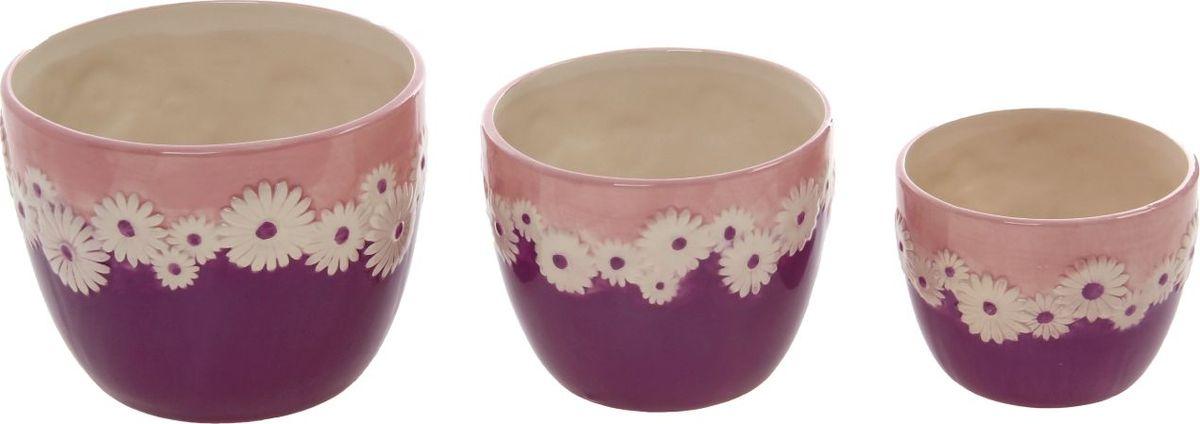 Набор кашпо Ромашки, цвет: фиолетовый, 3 предмета531-105Размеры: 13 х 10 см, 15 х 13 см, 18 х 15 см. Комнатные растения — всеобщие любимцы. Они радуют глаз, насыщают помещение кислородом и украшают пространство. Каждому из растений необходим свой удобный и красивый дом.Кашпо из керамики прекрасно подходят для высадки растений:за счёт пластичности глины и разных способов обработки существует великое множество форм и дизайновпористый материал позволяет испаряться лишней влагевоздух, необходимый для дыхания корней, проникает сквозь керамические стенки.Набор кашпо 3 шт. Ромашки фиолетовое позаботится о зелёном питомце, освежит интерьер и подчеркнёт его стиль. Добавьте помещению уют.