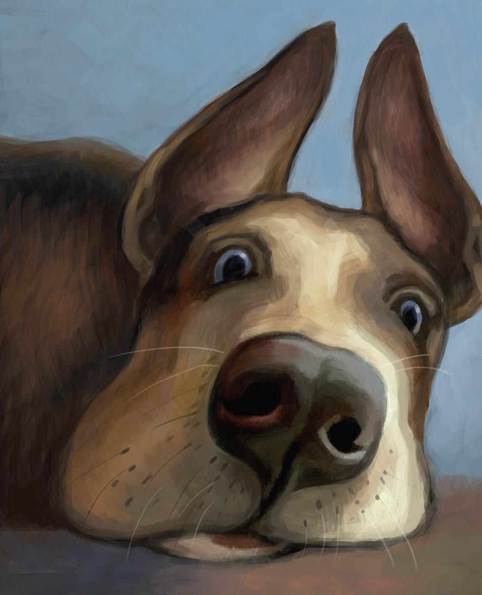 Marker Тетрадь общая Зверье мое Собака 48 листов72523WDТетрадь с дизайнерской обложкой и цветным внутренним блоком