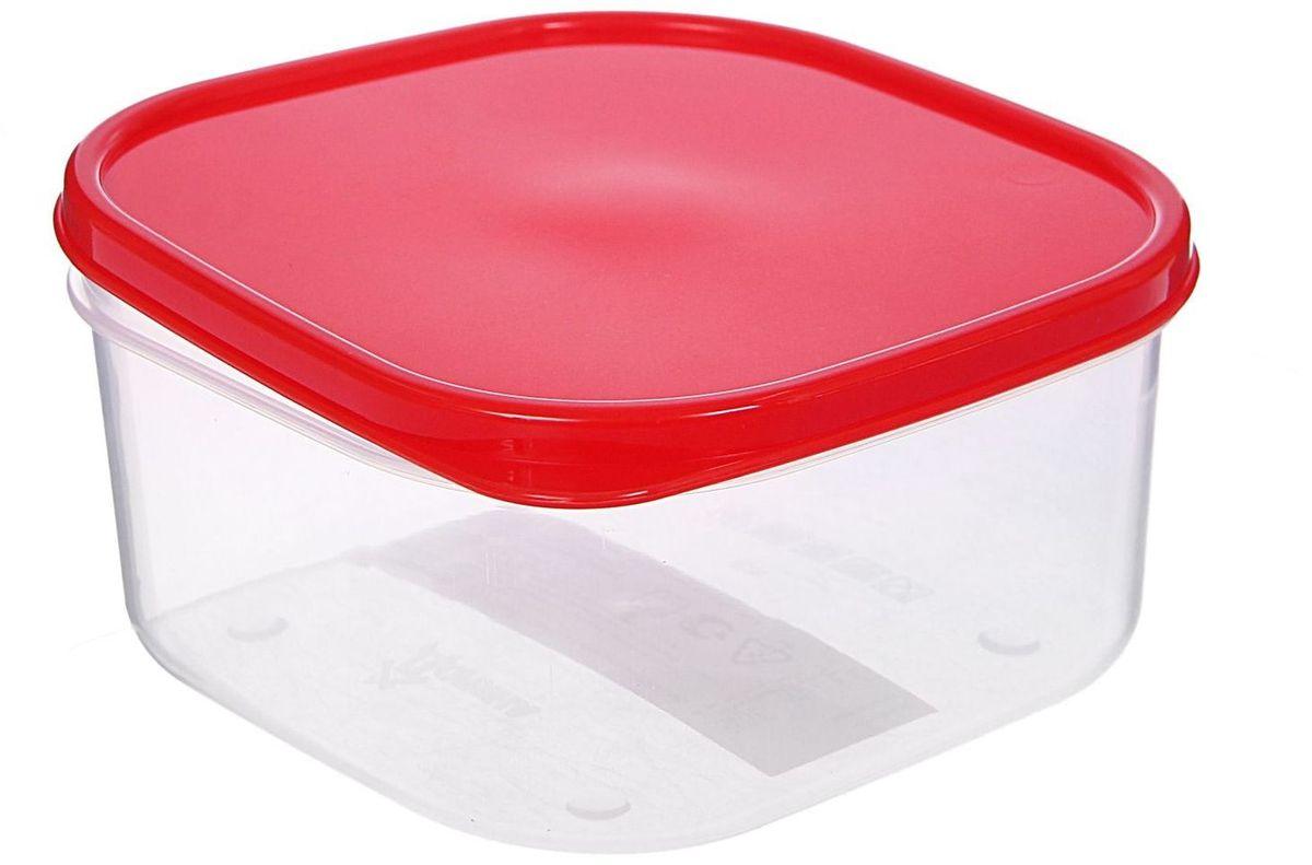 Контейнер пищевой Доляна, цвет: красный, 700 мл115510Если после вкусного обеда осталась еда, а насладиться трапезой хочется и на следующий день, ланч-бокс станет отличным решением данной проблемы!Такой контейнер является незаменимым предметом кухонной утвари, ведь у него много преимуществ:Простота ухода. Ланч-бокс достаточно промыть тёплой водой с небольшим количеством чистящего средства, и он снова готов к использованию.Вместительность. Большой выбор форм и объёма поможет разместить разнообразные продукты от сахара до супов.Эргономичность. Ланч-боксы очень легко хранить даже в самой маленькой кухне, так как их можно поставить один в другой по принципу матрёшки.Многофункциональность. Разнообразие цветов и форм делает возможным использование контейнеров не только на кухне, но и в других областях домашнего быта.Любители приготовления обеда на всю семью в большинстве случаев приобретают ланч-боксы наборами, так как это позволяет рассортировать продукты по всевозможным признакам. К тому же контейнеры среднего размера станут незаменимыми помощниками на работе: ведь что может быть приятнее, чем порадовать себя во время обеда прекрасной едой, заботливо сохранённой в контейнере?В качестве материала для изготовления используется пластик, что делает процесс ухода за контейнером ещё более эффективным. К каждому ланч-боксу в комплекте также прилагается крышка подходящего размера, это позволяет плотно и надёжно удерживать запах еды и упрощает процесс транспортировки.Однако рекомендуется соблюдать и меры предосторожности: не использовать пластиковые контейнеры в духовых шкафах и на открытом огне, а также не разогревать в микроволновых печах при закрытой крышке ланч-бокса. Соблюдение мер безопасности позволит продлить срок эксплуатации и сохранить отличный внешний вид изделия.Эргономичный дизайн и многофункциональность таких контейнеров — вот, что является причиной большой популярности данного предмета у каждой хозяйки. А в преддверии лета и дачного сезона такое приобретение позво