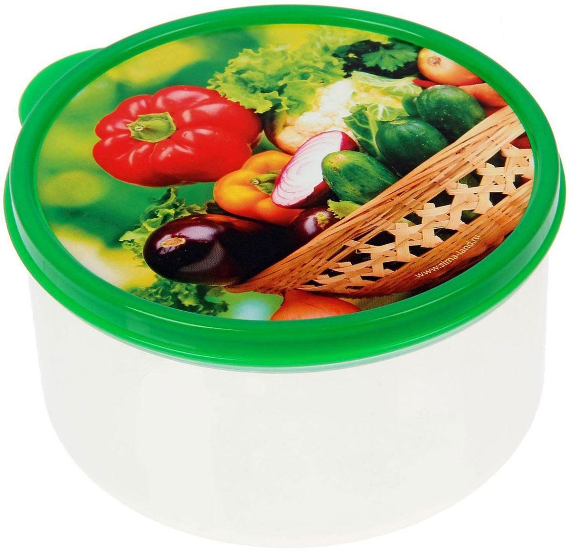 Ланч-бокс Доляна №10, круглый, 500 мл21395599Если после вкусного обеда осталась еда, а насладиться трапезой хочется и на следующий день, ланч-бокс станет отличным решением данной проблемы!Такой контейнер является незаменимым предметом кухонной утвари, ведь у него много преимуществ:Простота ухода. Ланч-бокс достаточно промыть тёплой водой с небольшим количеством чистящего средства, и он снова готов к использованию.Вместительность. Большой выбор форм и объёма поможет разместить разнообразные продукты от сахара до супов.Эргономичность. Ланч-боксы очень легко хранить даже в самой маленькой кухне, так как их можно поставить один в другой по принципу матрёшки.Многофункциональность. Разнообразие цветов и форм делает возможным использование контейнеров не только на кухне, но и в других областях домашнего быта.Любители приготовления обеда на всю семью в большинстве случаев приобретают ланч-боксы наборами, так как это позволяет рассортировать продукты по всевозможным признакам. К тому же контейнеры среднего размера станут незаменимыми помощниками на работе: ведь что может быть приятнее, чем порадовать себя во время обеда прекрасной едой, заботливо сохранённой в контейнере?В качестве материала для изготовления используется пластик, что делает процесс ухода за контейнером ещё более эффективным. К каждому ланч-боксу в комплекте также прилагается крышка подходящего размера, это позволяет плотно и надёжно удерживать запах еды и упрощает процесс транспортировки.Однако рекомендуется соблюдать и меры предосторожности: не использовать пластиковые контейнеры в духовых шкафах и на открытом огне, а также не разогревать в микроволновых печах при закрытой крышке ланч-бокса. Соблюдение мер безопасности позволит продлить срок эксплуатации и сохранить отличный внешний вид изделия.Эргономичный дизайн и многофункциональность таких контейнеров — вот, что является причиной большой популярности данного предмета у каждой хозяйки. А в преддверии лета и дачного сезона такое приобретение позволит подн