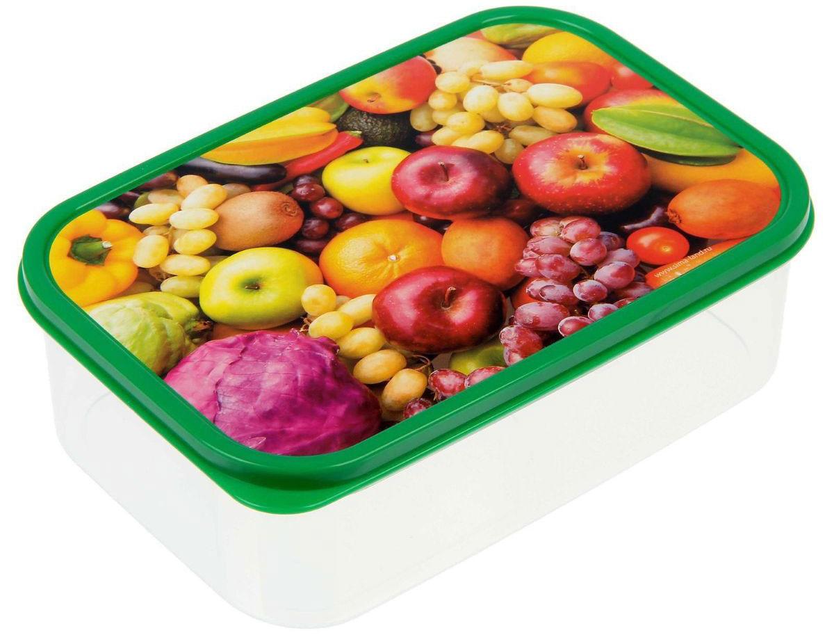 Ланч-бокс Доляна Дары лета, прямоугольный, 1,2 л1333940Ланч-бокс Доляна изготовлен из прочного пищевого пластика. В комплекте прилагается крышка подходящего размера, которая плотно и надежно закрывается и упрощает процесс транспортировки. Такой контейнер является незаменимым предметом кухонной утвари, ведь у него много преимуществ: Простота ухода. Ланч-бокс достаточно промыть теплой водой с небольшим количеством чистящего средства. Вместительность. Изделие позволяет разместить разнообразные продукты от сахара до супов. Эргономичность. Ланч-боксы очень легко хранить даже в самой маленькой кухне, так как их можно поставить один в другой по принципу матрешки. Многофункциональность. Он пригодится, если после вкусного обеда осталась еда, а насладиться трапезой хочется и на следующий день. Можно использовать не только на кухне, но и для хранения различных бытовых предметов, а также брать с собой еду на работу или учебу. Не использовать пластиковые контейнеры в духовых шкафах и на открытом огне, а также не разогревать в микроволновых печах при закрытой крышке ланч-бокса.