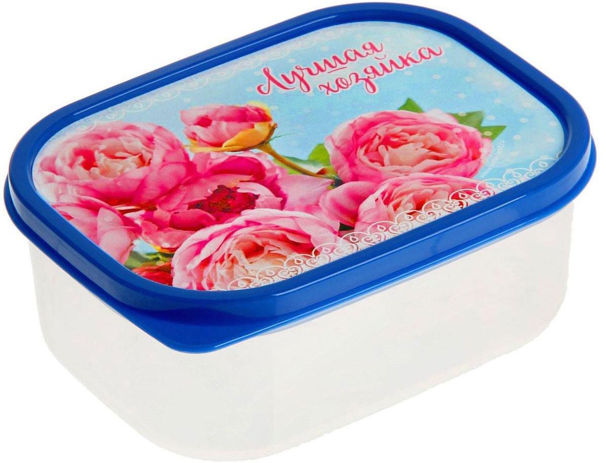 Ланч-бокс Доляна №1, прямоугольный, 500 мл115510Если после вкусного обеда осталась еда, а насладиться трапезой хочется и на следующий день, ланч-бокс станет отличным решением данной проблемы!Такой контейнер является незаменимым предметом кухонной утвари, ведь у него много преимуществ:Простота ухода. Ланч-бокс достаточно промыть тёплой водой с небольшим количеством чистящего средства, и он снова готов к использованию.Вместительность. Большой выбор форм и объёма поможет разместить разнообразные продукты от сахара до супов.Эргономичность. Ланч-боксы очень легко хранить даже в самой маленькой кухне, так как их можно поставить один в другой по принципу матрёшки.Многофункциональность. Разнообразие цветов и форм делает возможным использование контейнеров не только на кухне, но и в других областях домашнего быта.Любители приготовления обеда на всю семью в большинстве случаев приобретают ланч-боксы наборами, так как это позволяет рассортировать продукты по всевозможным признакам. К тому же контейнеры среднего размера станут незаменимыми помощниками на работе: ведь что может быть приятнее, чем порадовать себя во время обеда прекрасной едой, заботливо сохранённой в контейнере?В качестве материала для изготовления используется пластик, что делает процесс ухода за контейнером ещё более эффективным. К каждому ланч-боксу в комплекте также прилагается крышка подходящего размера, это позволяет плотно и надёжно удерживать запах еды и упрощает процесс транспортировки.Однако рекомендуется соблюдать и меры предосторожности: не использовать пластиковые контейнеры в духовых шкафах и на открытом огне, а также не разогревать в микроволновых печах при закрытой крышке ланч-бокса. Соблюдение мер безопасности позволит продлить срок эксплуатации и сохранить отличный внешний вид изделия.Эргономичный дизайн и многофункциональность таких контейнеров — вот, что является причиной большой популярности данного предмета у каждой хозяйки. А в преддверии лета и дачного сезона такое приобретение позволит п