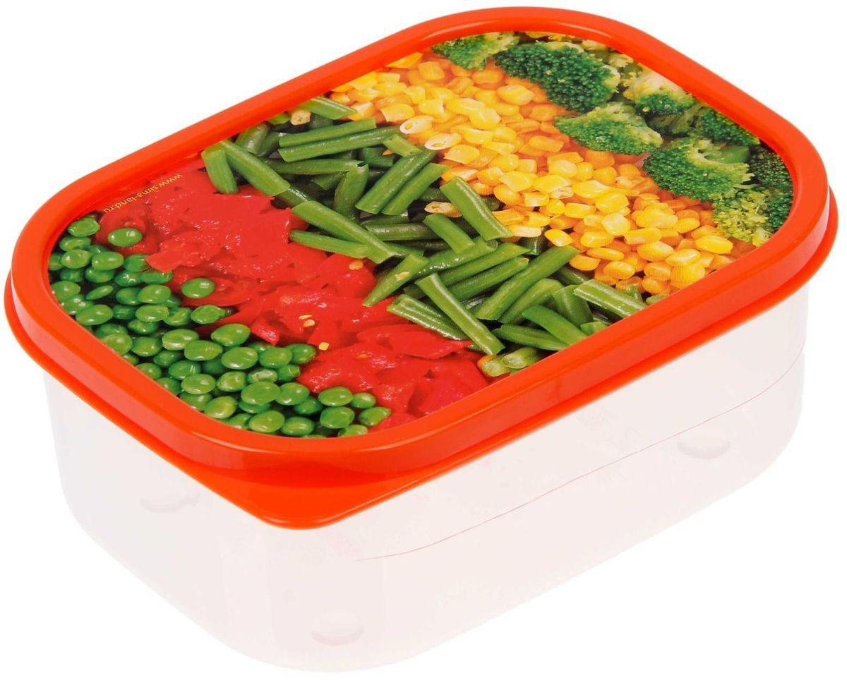 Ланч-бокс Доляна №9, прямоугольный, 500 млVT-1520(SR)Если после вкусного обеда осталась еда, а насладиться трапезой хочется и на следующий день, ланч-бокс станет отличным решением данной проблемы!Такой контейнер является незаменимым предметом кухонной утвари, ведь у него много преимуществ:Простота ухода. Ланч-бокс достаточно промыть тёплой водой с небольшим количеством чистящего средства, и он снова готов к использованию.Вместительность. Большой выбор форм и объёма поможет разместить разнообразные продукты от сахара до супов.Эргономичность. Ланч-боксы очень легко хранить даже в самой маленькой кухне, так как их можно поставить один в другой по принципу матрёшки.Многофункциональность. Разнообразие цветов и форм делает возможным использование контейнеров не только на кухне, но и в других областях домашнего быта.Любители приготовления обеда на всю семью в большинстве случаев приобретают ланч-боксы наборами, так как это позволяет рассортировать продукты по всевозможным признакам. К тому же контейнеры среднего размера станут незаменимыми помощниками на работе: ведь что может быть приятнее, чем порадовать себя во время обеда прекрасной едой, заботливо сохранённой в контейнере?В качестве материала для изготовления используется пластик, что делает процесс ухода за контейнером ещё более эффективным. К каждому ланч-боксу в комплекте также прилагается крышка подходящего размера, это позволяет плотно и надёжно удерживать запах еды и упрощает процесс транспортировки.Однако рекомендуется соблюдать и меры предосторожности: не использовать пластиковые контейнеры в духовых шкафах и на открытом огне, а также не разогревать в микроволновых печах при закрытой крышке ланч-бокса. Соблюдение мер безопасности позволит продлить срок эксплуатации и сохранить отличный внешний вид изделия.Эргономичный дизайн и многофункциональность таких контейнеров — вот, что является причиной большой популярности данного предмета у каждой хозяйки. А в преддверии лета и дачного сезона такое приобретение позво
