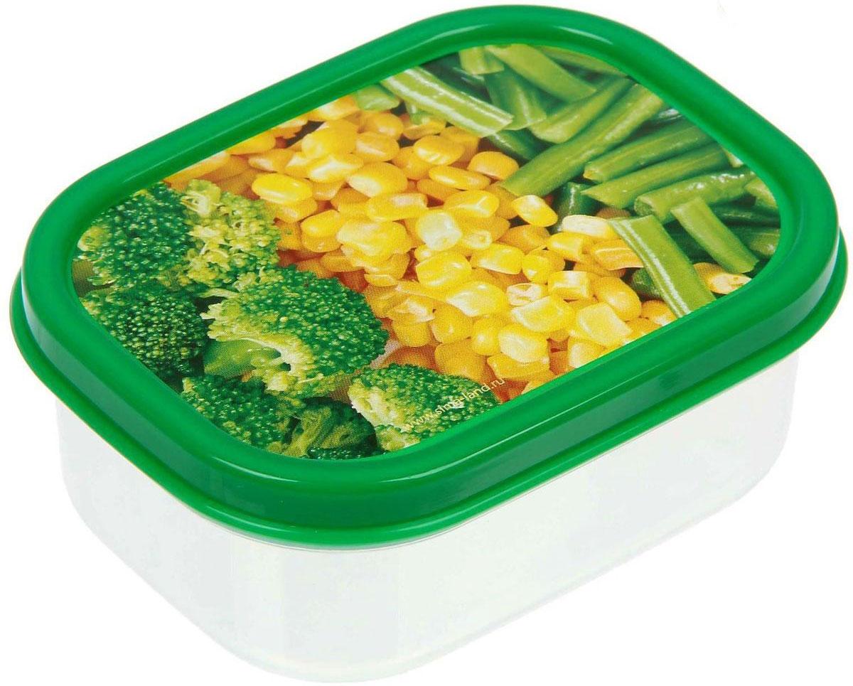 Ланч-бокс Доляна. №5, прямоугольный, цвет: зеленый, 150 мл1333968Ланч-бокс Доляна. №5 является незаменимым предметом кухонной утвари, ведь у него много преимуществ:- Простота ухода. Ланч-бокс достаточно промыть тёплой водой с небольшим количеством чистящего средства, и он снова готов к использованию.- Вместительность. Поможет разместить разнообразные продукты от сахара до супов.- Эргономичность. Ланч-бокс очень легко хранить даже в самой маленькой кухне.- Многофункциональность. Разнообразие цветов и форм делает возможным использование контейнеров не только на кухне, но и в других областях домашнего быта.В качестве материала для изготовления используется пластик, что делает процесс ухода за контейнером ещё более эффективным. К ланч-боксу в комплекте прилагается крышка подходящего размера, это позволяет плотно и надёжно удерживать запах еды и упрощает процесс транспортировки.Рекомендуется соблюдать и меры предосторожности: не использовать пластиковые контейнеры в духовых шкафах и на открытом огне, а также не разогревать в микроволновых печах при закрытой крышке ланч-бокса. Соблюдение мер безопасности позволит продлить срок эксплуатации и сохранить отличный внешний вид изделия.Эргономичный дизайн и многофункциональность таких контейнеров - вот, что является причиной большой популярности данного предмета у каждой хозяйки.