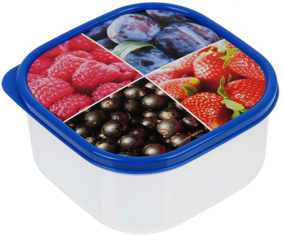 Ланч-бокс Доляна №1, квадратный, 700 млVT-1520(SR)Если после вкусного обеда осталась еда, а насладиться трапезой хочется и на следующий день, ланч-бокс станет отличным решением данной проблемы!Такой контейнер является незаменимым предметом кухонной утвари, ведь у него много преимуществ:Простота ухода. Ланч-бокс достаточно промыть тёплой водой с небольшим количеством чистящего средства, и он снова готов к использованию.Вместительность. Большой выбор форм и объёма поможет разместить разнообразные продукты от сахара до супов.Эргономичность. Ланч-боксы очень легко хранить даже в самой маленькой кухне, так как их можно поставить один в другой по принципу матрёшки.Многофункциональность. Разнообразие цветов и форм делает возможным использование контейнеров не только на кухне, но и в других областях домашнего быта.Любители приготовления обеда на всю семью в большинстве случаев приобретают ланч-боксы наборами, так как это позволяет рассортировать продукты по всевозможным признакам. К тому же контейнеры среднего размера станут незаменимыми помощниками на работе: ведь что может быть приятнее, чем порадовать себя во время обеда прекрасной едой, заботливо сохранённой в контейнере?В качестве материала для изготовления используется пластик, что делает процесс ухода за контейнером ещё более эффективным. К каждому ланч-боксу в комплекте также прилагается крышка подходящего размера, это позволяет плотно и надёжно удерживать запах еды и упрощает процесс транспортировки.Однако рекомендуется соблюдать и меры предосторожности: не использовать пластиковые контейнеры в духовых шкафах и на открытом огне, а также не разогревать в микроволновых печах при закрытой крышке ланч-бокса. Соблюдение мер безопасности позволит продлить срок эксплуатации и сохранить отличный внешний вид изделия.Эргономичный дизайн и многофункциональность таких контейнеров — вот, что является причиной большой популярности данного предмета у каждой хозяйки. А в преддверии лета и дачного сезона такое приобретение позволит